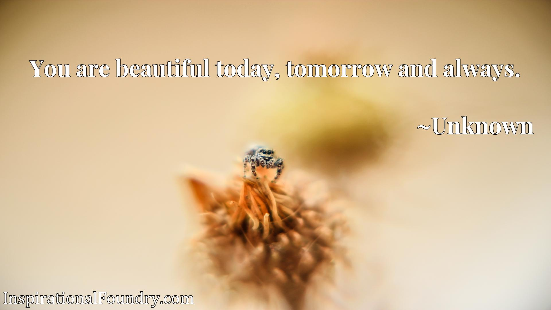 Quote Picture :You are beautiful today, tomorrow and always.