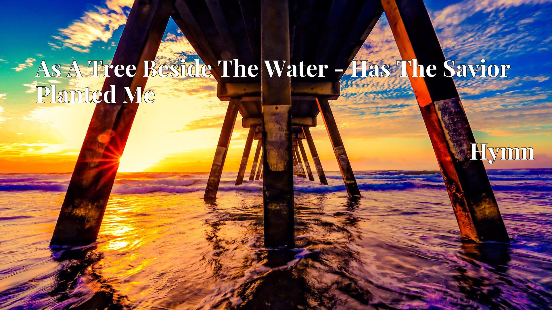 As A Tree Beside The Water - Has The Savior Planted Me - Hymn