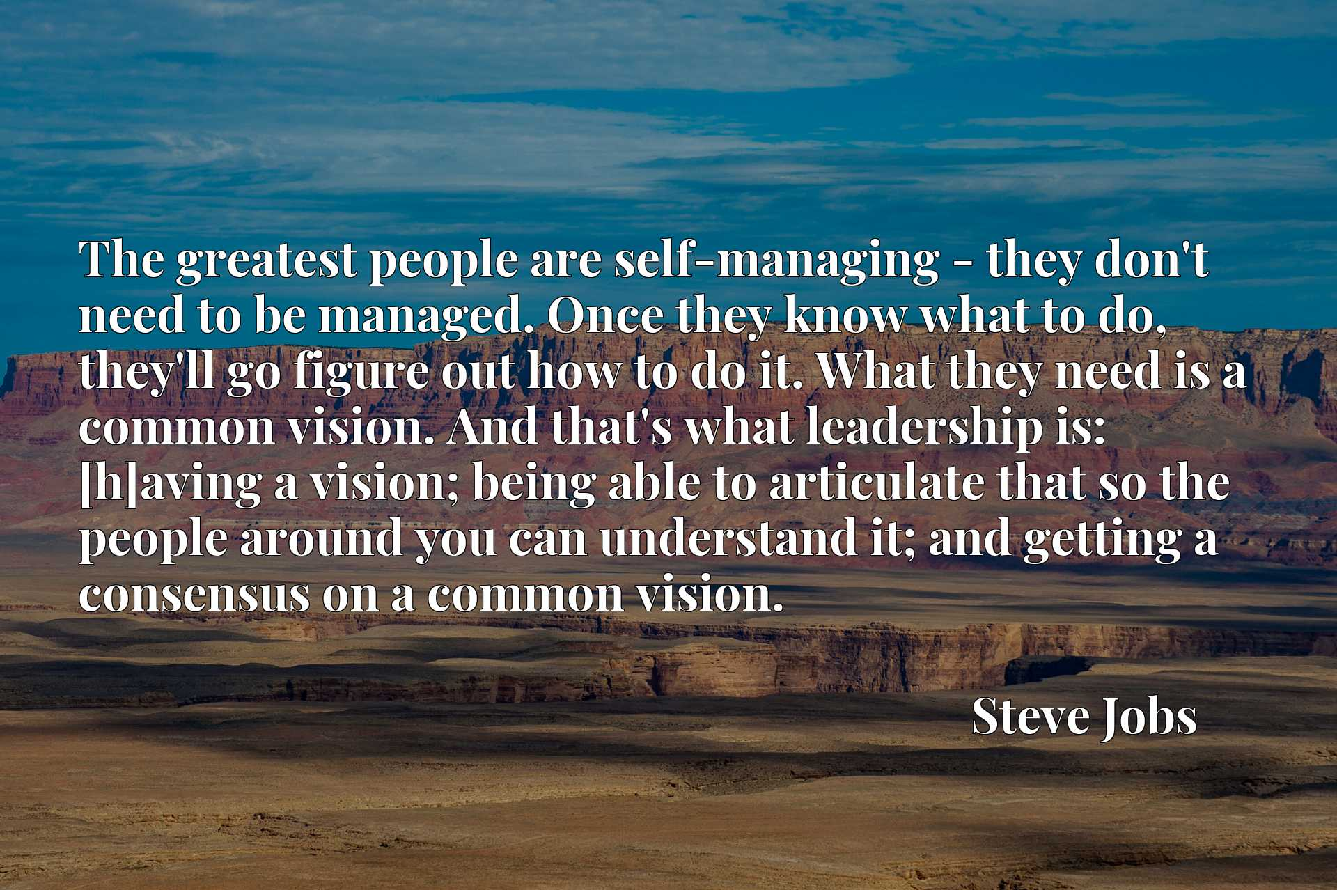 The greatest people are self-managing - they don't need to be managed. Once they know what to do, they'll go figure out how to do it. What they need is a common vision. And that's what leadership is: [h]aving a vision; being able to articulate that so the people around you can understand it; and getting a consensus on a common vision.