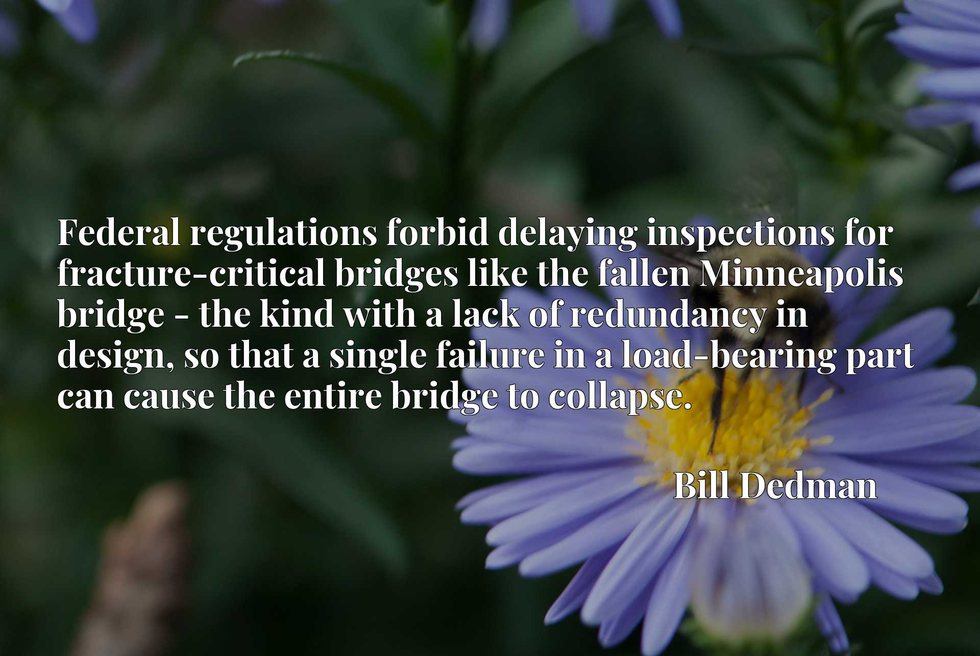 Federal regulations forbid delaying inspections for fracture-critical bridges like the fallen Minneapolis bridge - the kind with a lack of redundancy in design, so that a single failure in a load-bearing part can cause the entire bridge to collapse.