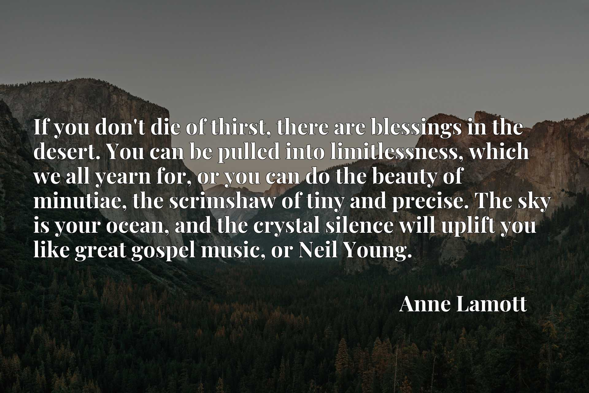 If you don't die of thirst, there are blessings in the desert. You can be pulled into limitlessness, which we all yearn for, or you can do the beauty of minutiae, the scrimshaw of tiny and precise. The sky is your ocean, and the crystal silence will uplift you like great gospel music, or Neil Young.