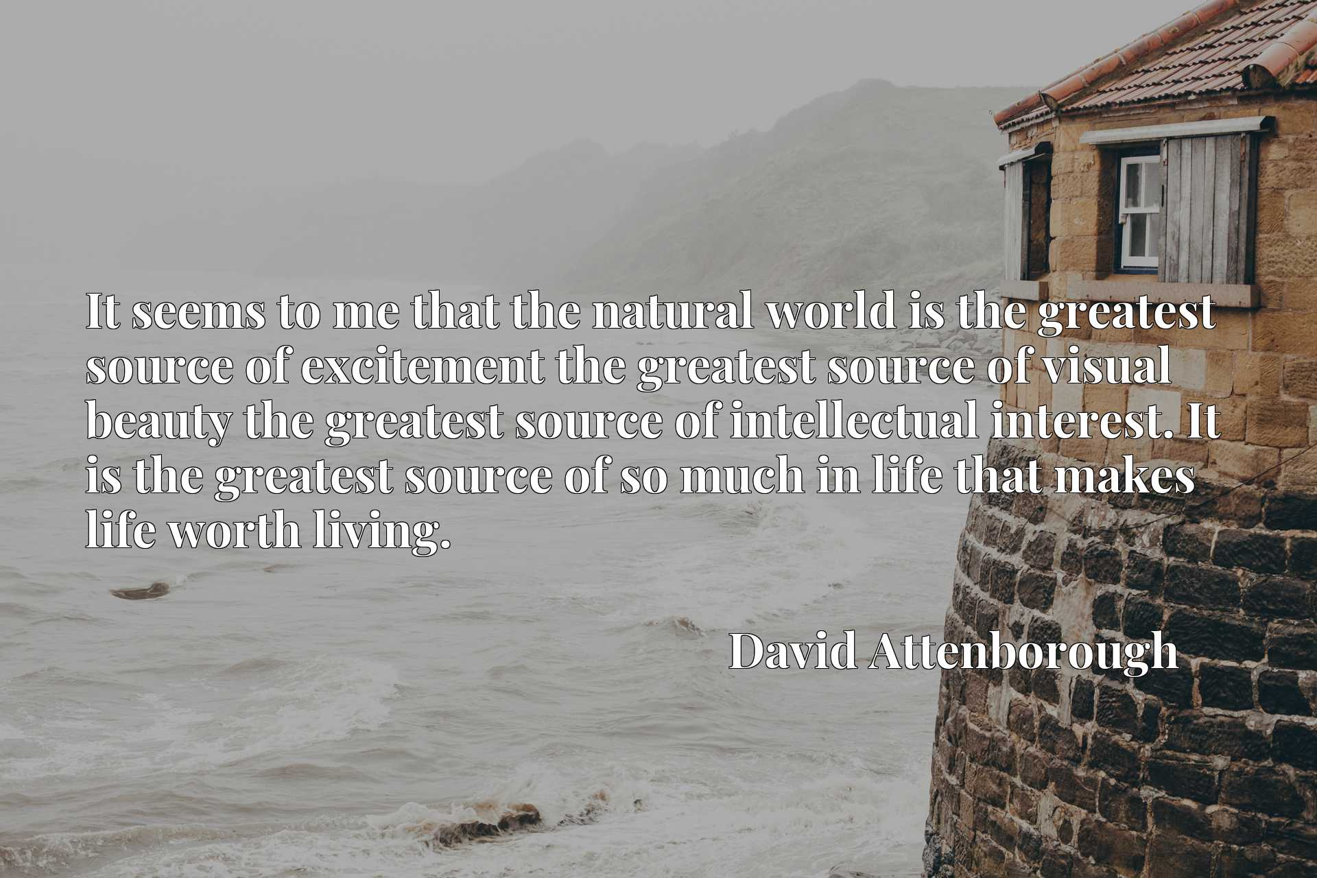 It seems to me that the natural world is the greatest source of excitement the greatest source of visual beauty the greatest source of intellectual interest. It is the greatest source of so much in life that makes life worth living.