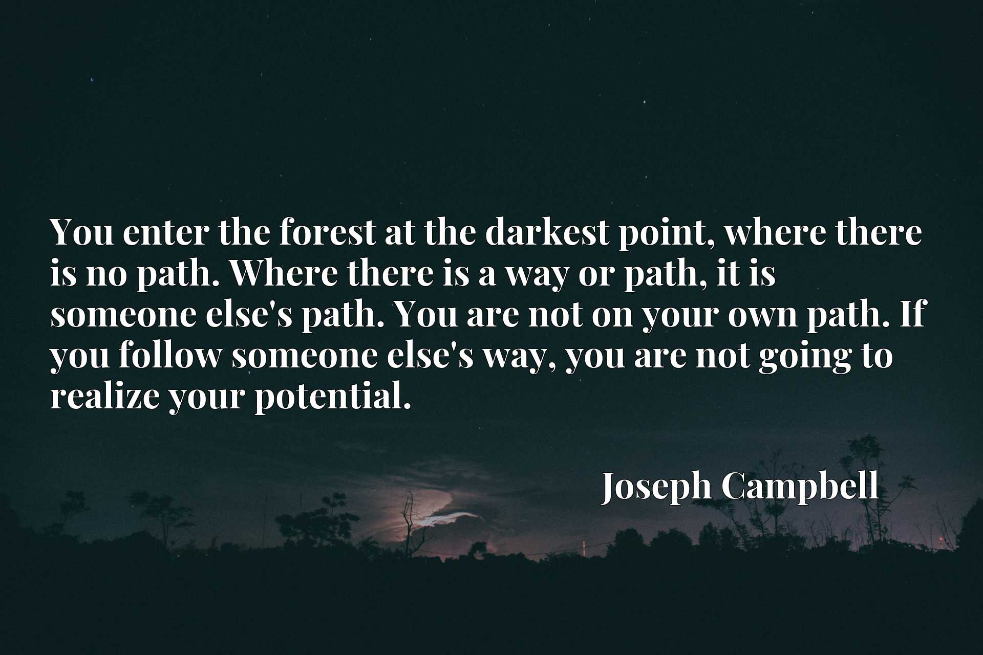 You enter the forest at the darkest point, where there is no path. Where there is a way or path, it is someone else's path. You are not on your own path. If you follow someone else's way, you are not going to realize your potential.