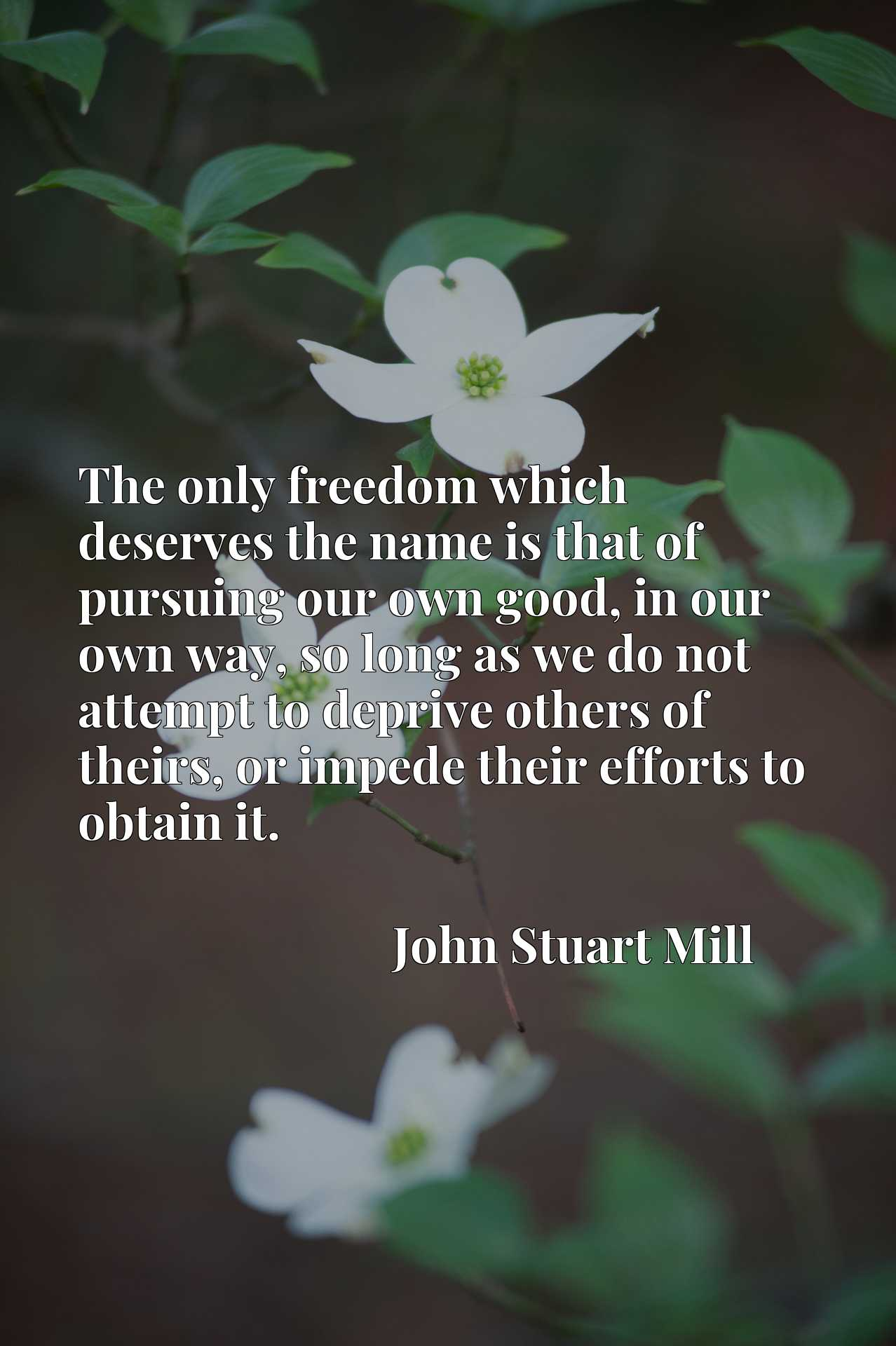 The only freedom which deserves the name is that of pursuing our own good, in our own way, so long as we do not attempt to deprive others of theirs, or impede their efforts to obtain it.