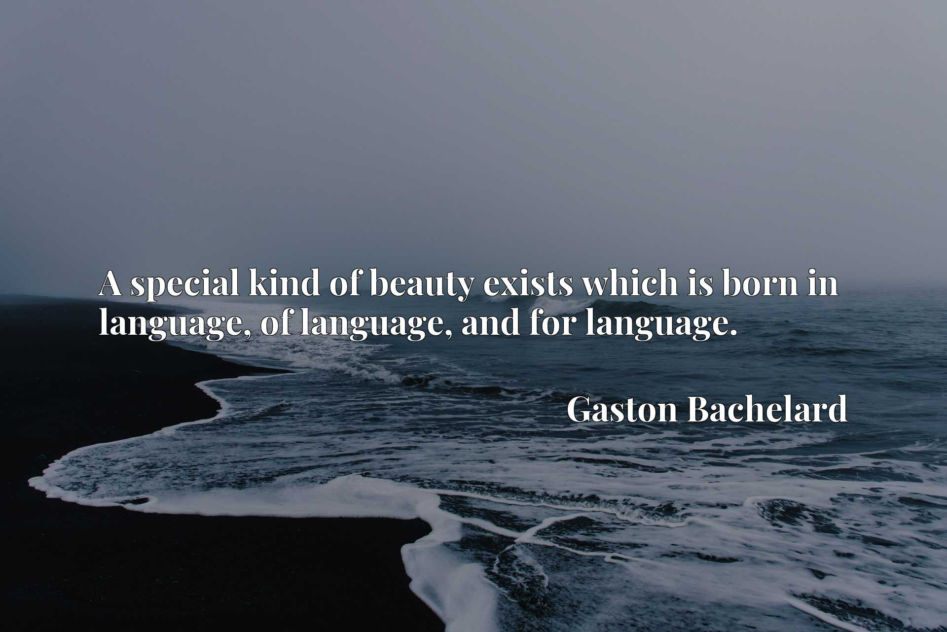 A special kind of beauty exists which is born in language, of language, and for language.