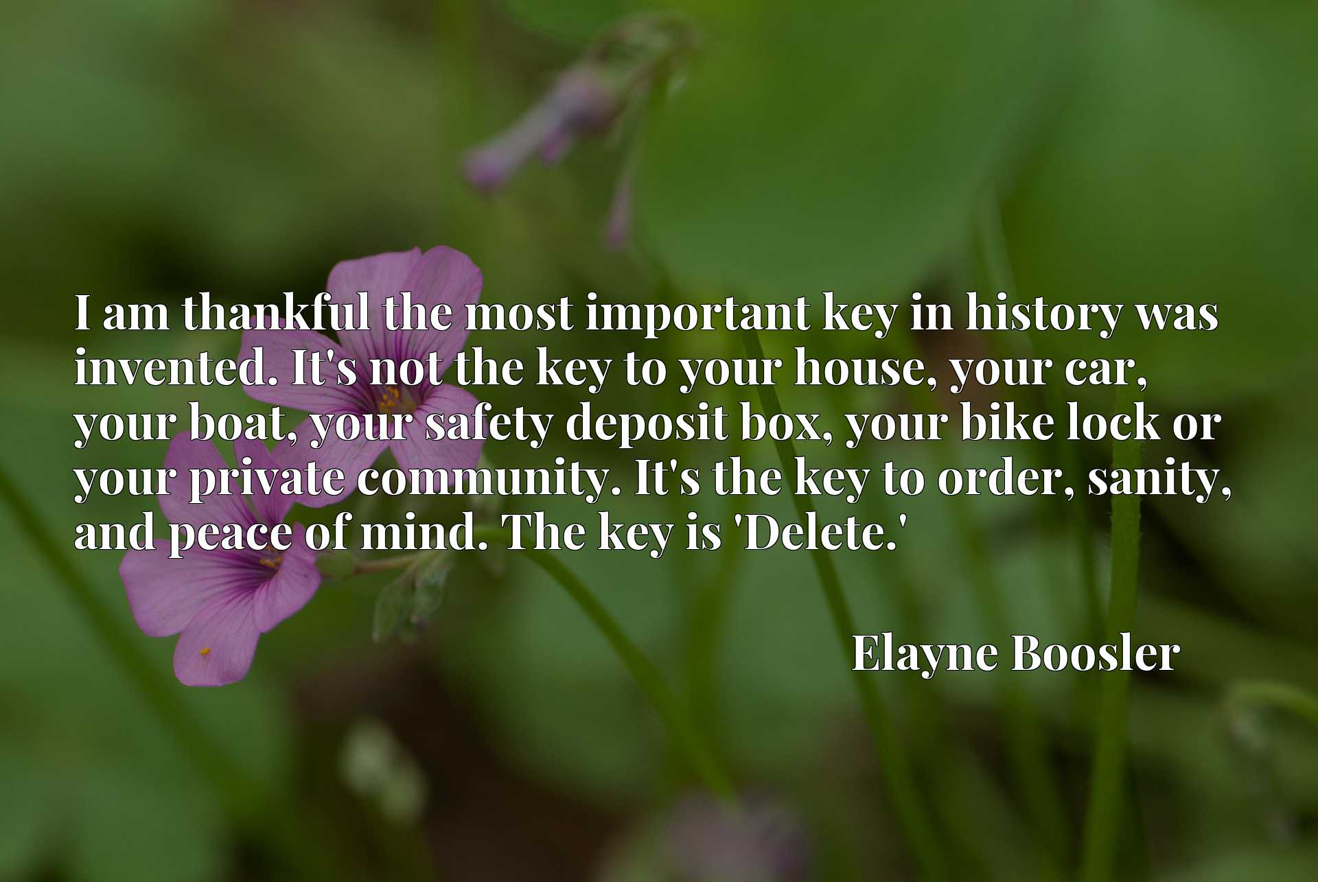 I am thankful the most important key in history was invented. It's not the key to your house, your car, your boat, your safety deposit box, your bike lock or your private community. It's the key to order, sanity, and peace of mind. The key is 'Delete.'