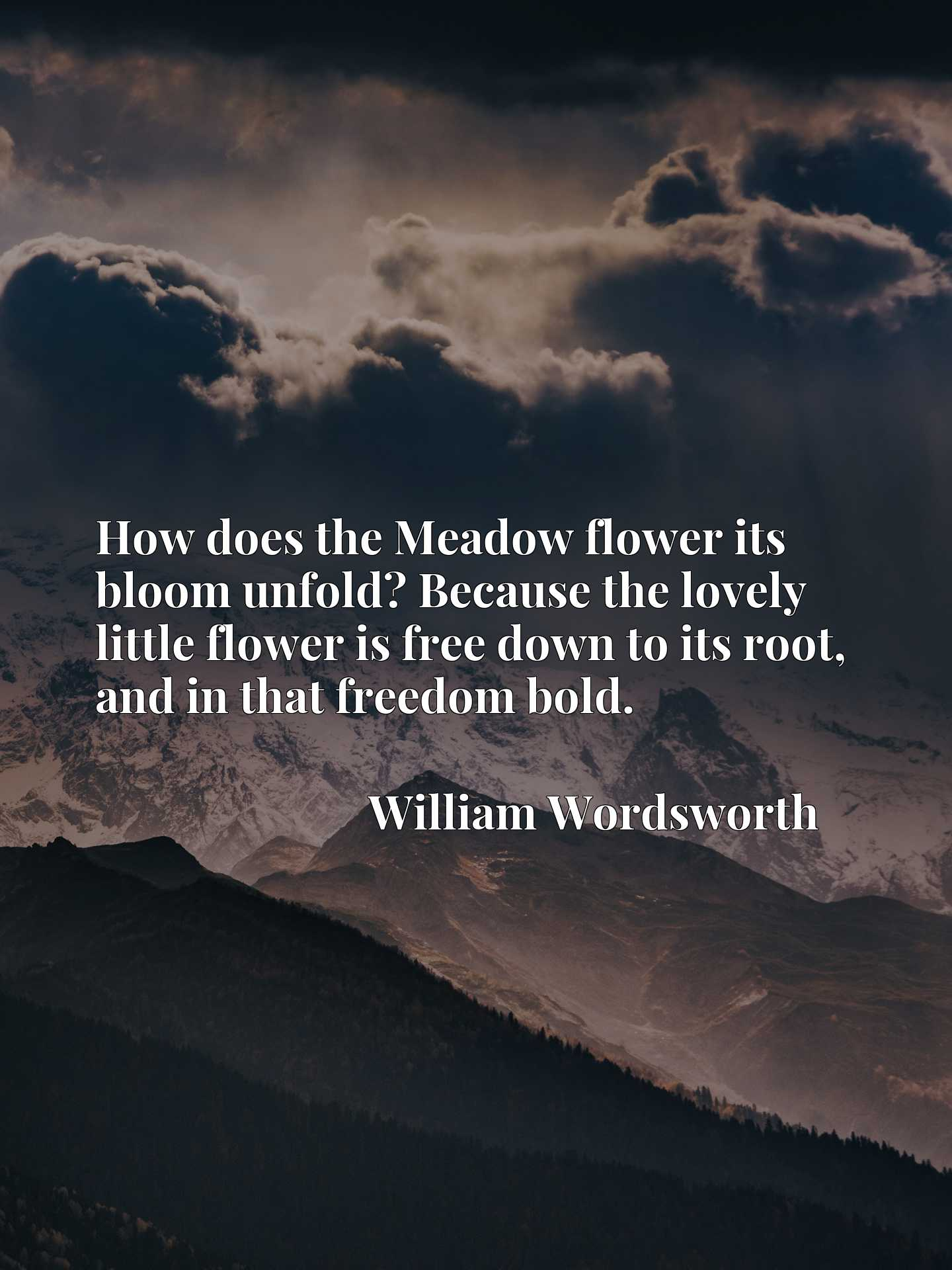How does the Meadow flower its bloom unfold? Because the lovely little flower is free down to its root, and in that freedom bold.