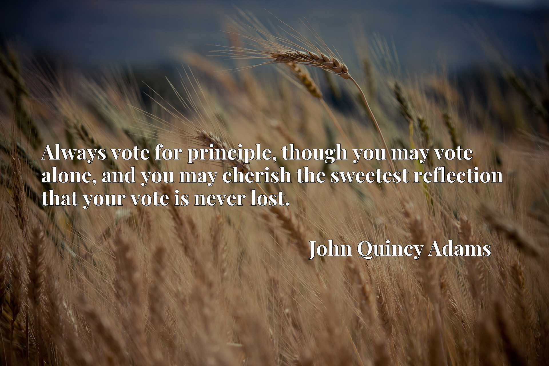 Always vote for principle, though you may vote alone, and you may cherish the sweetest reflection that your vote is never lost.