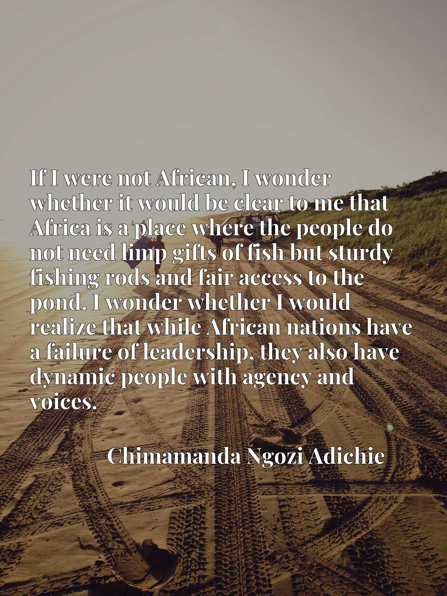 If I were not African, I wonder whether it would be clear to me that Africa is a place where the people do not need limp gifts of fish but sturdy fishing rods and fair access to the pond. I wonder whether I would realize that while African nations have a failure of leadership, they also have dynamic people with agency and voices.