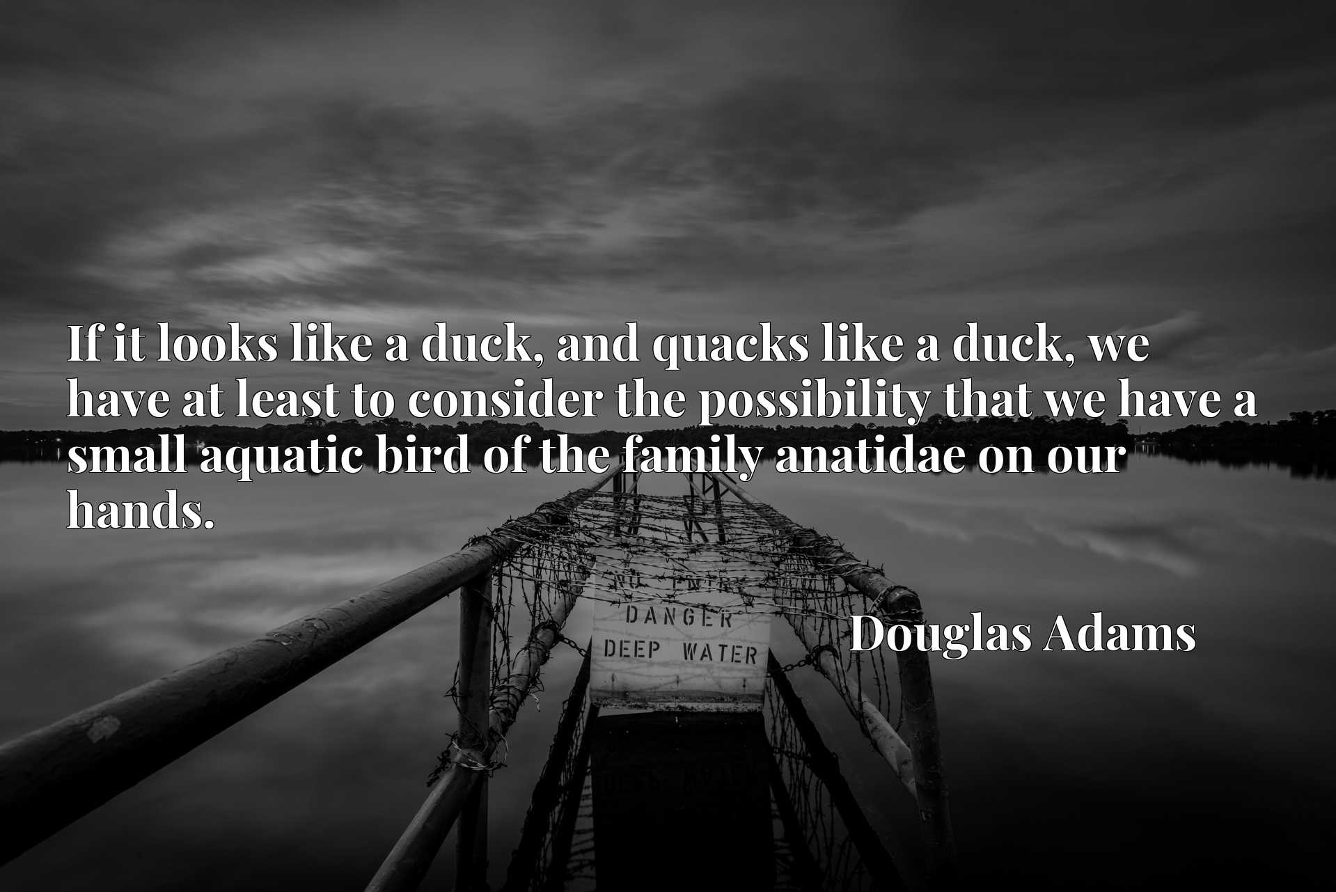 If it looks like a duck, and quacks like a duck, we have at least to consider the possibility that we have a small aquatic bird of the family anatidae on our hands.