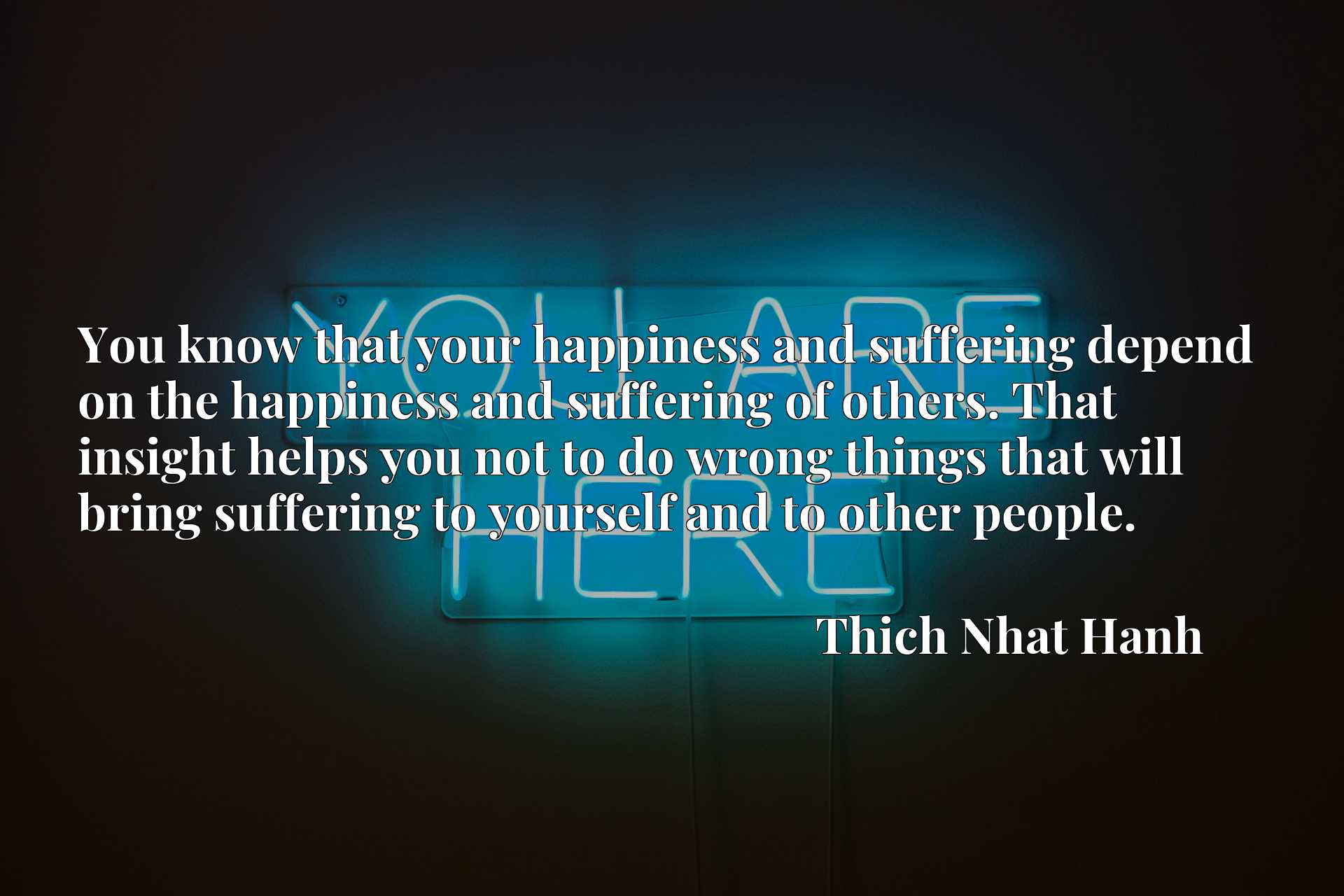 You know that your happiness and suffering depend on the happiness and suffering of others. That insight helps you not to do wrong things that will bring suffering to yourself and to other people.