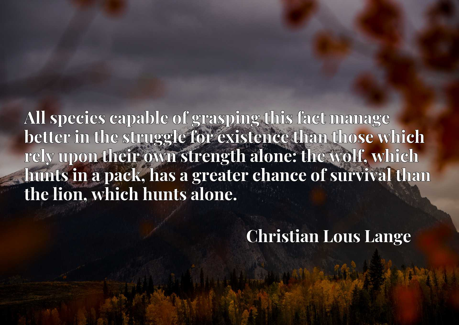 All species capable of grasping this fact manage better in the struggle for existence than those which rely upon their own strength alone: the wolf, which hunts in a pack, has a greater chance of survival than the lion, which hunts alone.