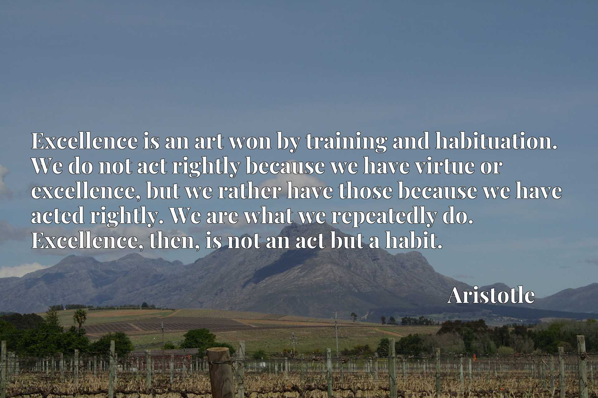 Excellence is an art won by training and habituation. We do not act rightly because we have virtue or excellence, but we rather have those because we have acted rightly. We are what we repeatedly do. Excellence, then, is not an act but a habit.