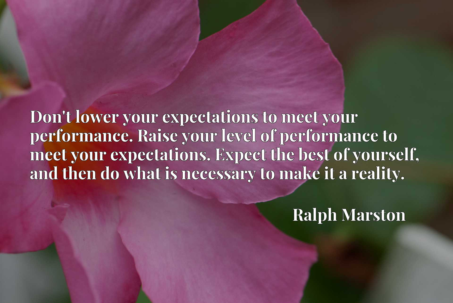 Don't lower your expectations to meet your performance. Raise your level of performance to meet your expectations. Expect the best of yourself, and then do what is necessary to make it a reality.