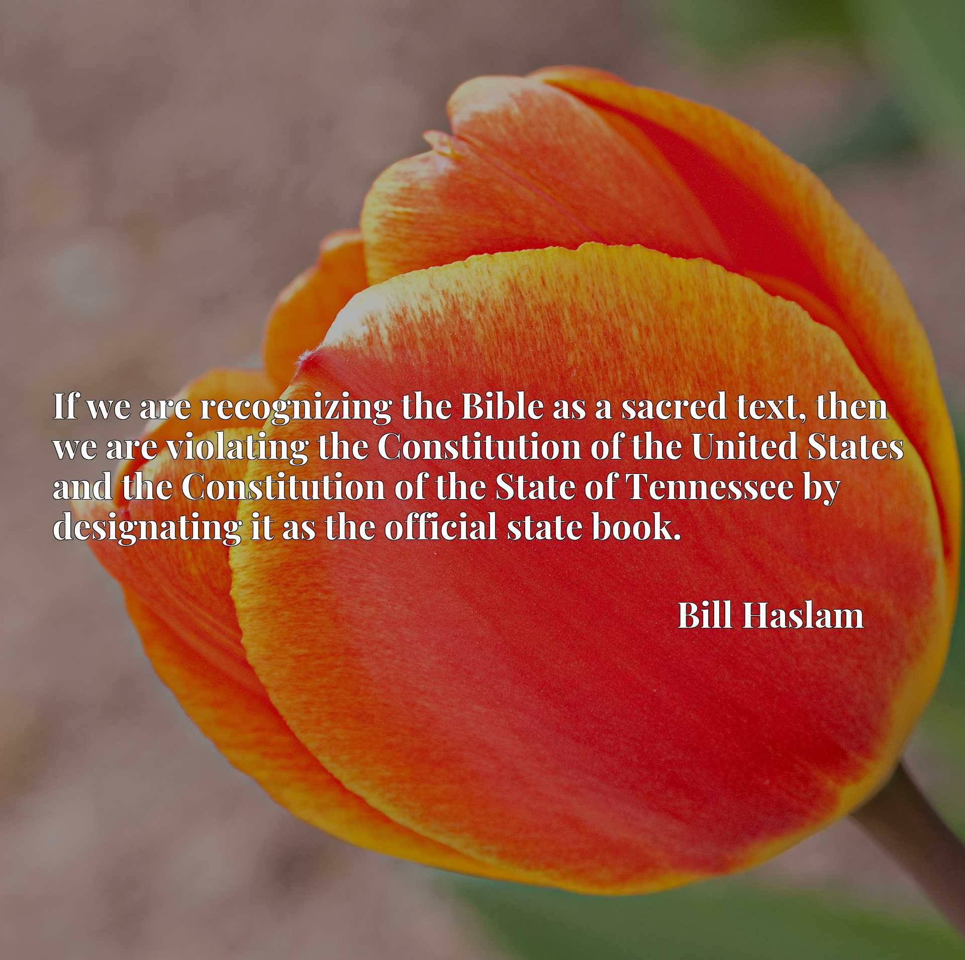 If we are recognizing the Bible as a sacred text, then we are violating the Constitution of the United States and the Constitution of the State of Tennessee by designating it as the official state book.