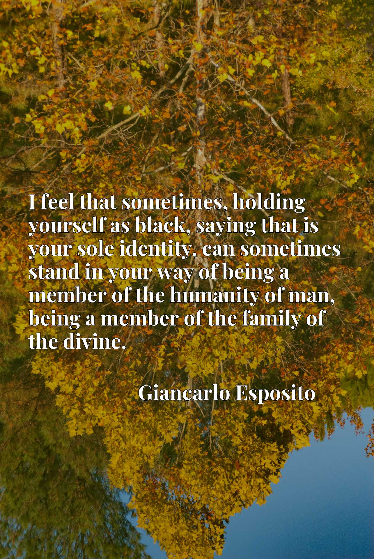 I feel that sometimes, holding yourself as black, saying that is your sole identity, can sometimes stand in your way of being a member of the humanity of man, being a member of the family of the divine.