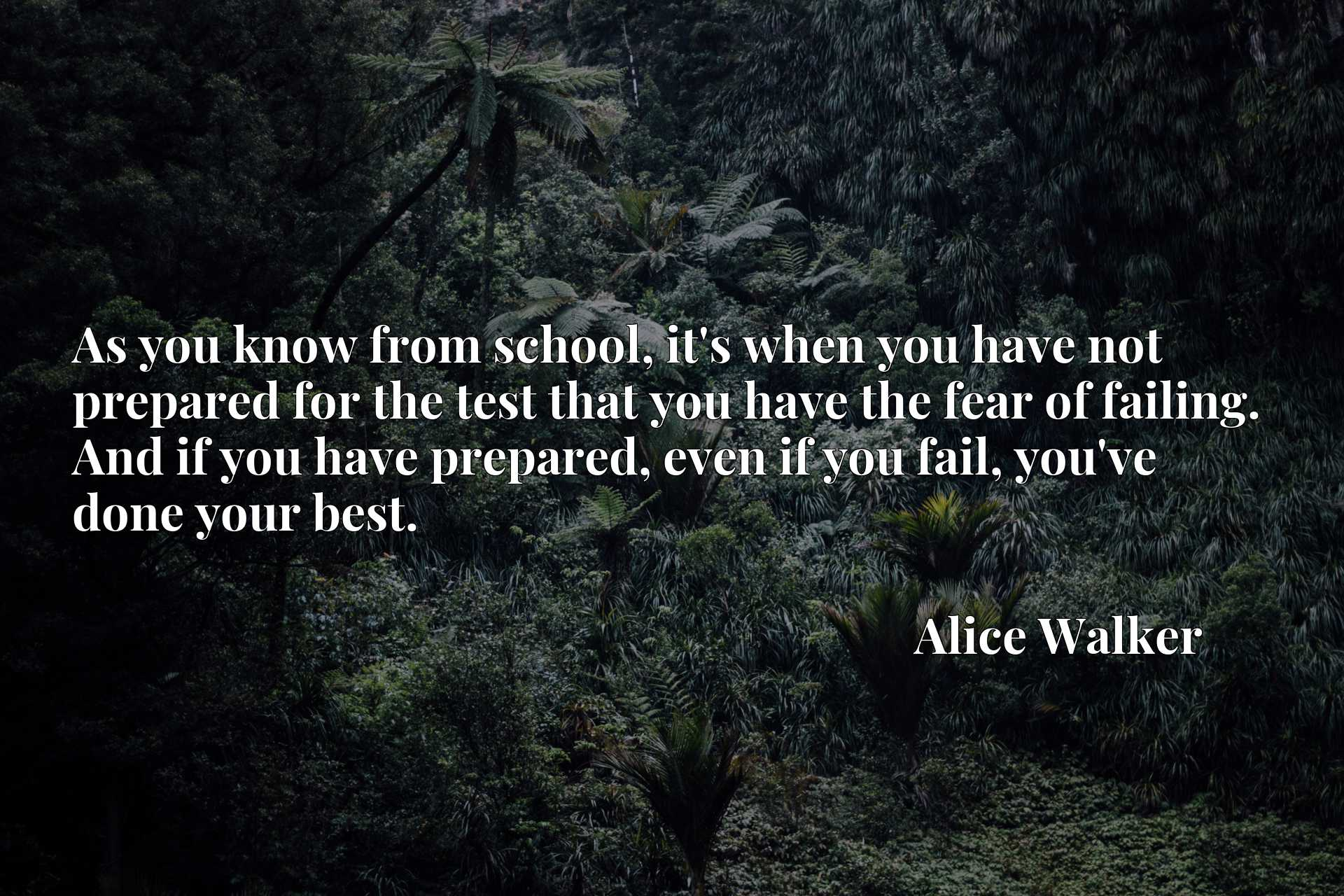 As you know from school, it's when you have not prepared for the test that you have the fear of failing. And if you have prepared, even if you fail, you've done your best.