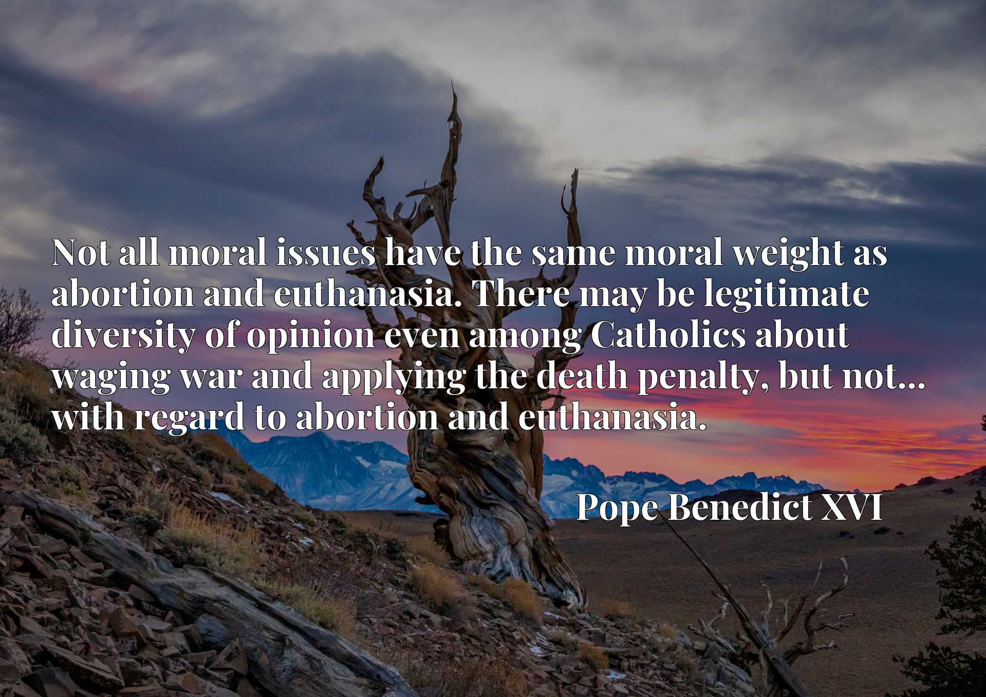 Not all moral issues have the same moral weight as abortion and euthanasia. There may be legitimate diversity of opinion even among Catholics about waging war and applying the death penalty, but not... with regard to abortion and euthanasia.