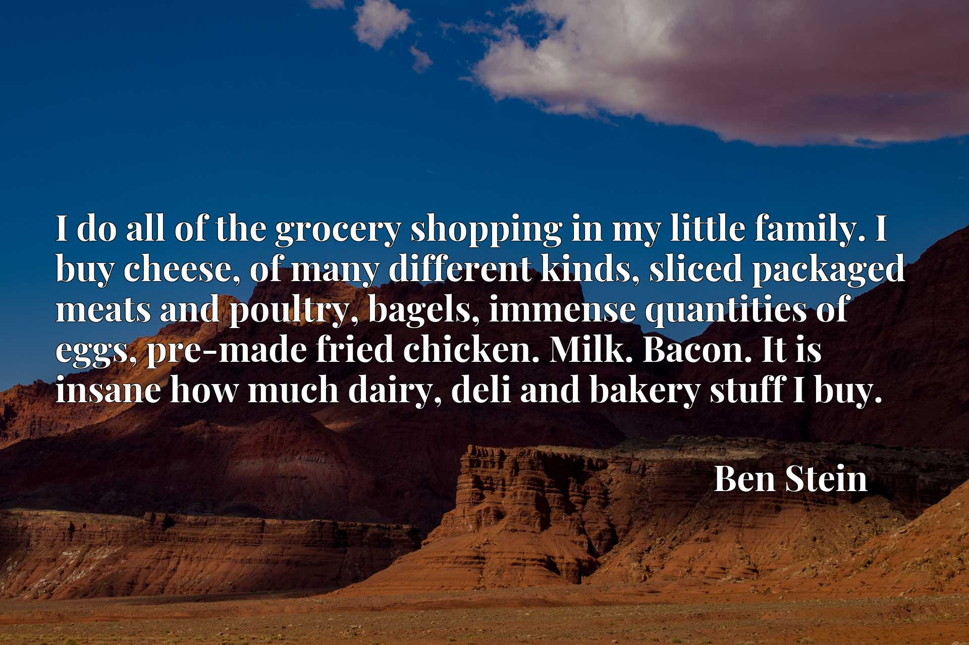 I do all of the grocery shopping in my little family. I buy cheese, of many different kinds, sliced packaged meats and poultry, bagels, immense quantities of eggs, pre-made fried chicken. Milk. Bacon. It is insane how much dairy, deli and bakery stuff I buy.