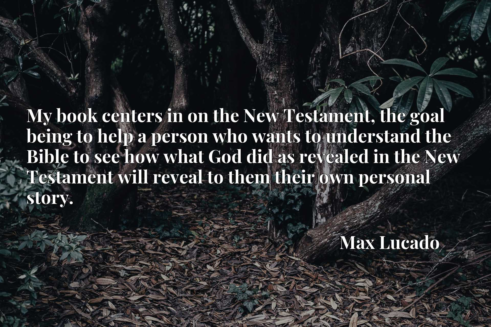 My book centers in on the New Testament, the goal being to help a person who wants to understand the Bible to see how what God did as revealed in the New Testament will reveal to them their own personal story.