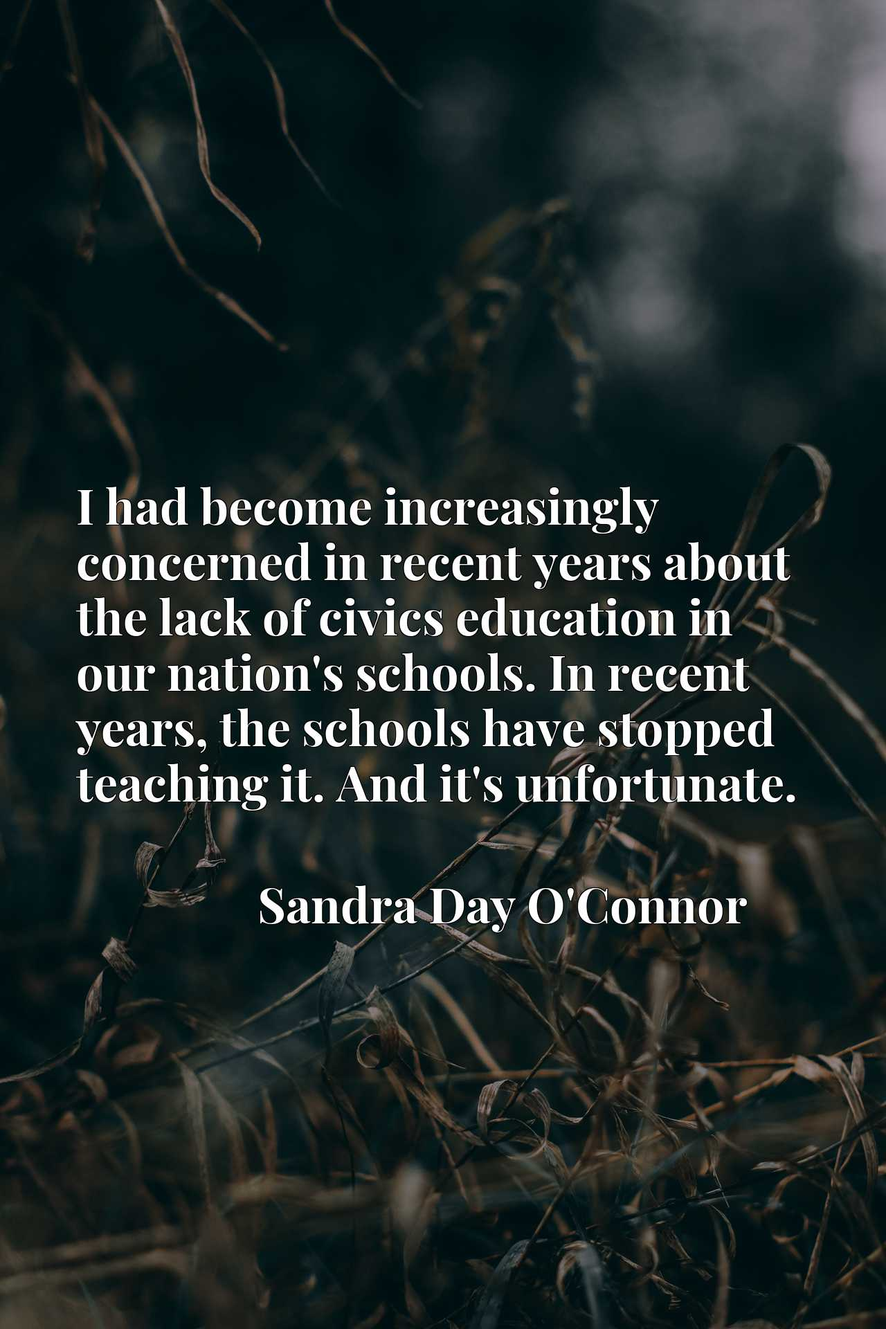 I had become increasingly concerned in recent years about the lack of civics education in our nation's schools. In recent years, the schools have stopped teaching it. And it's unfortunate.