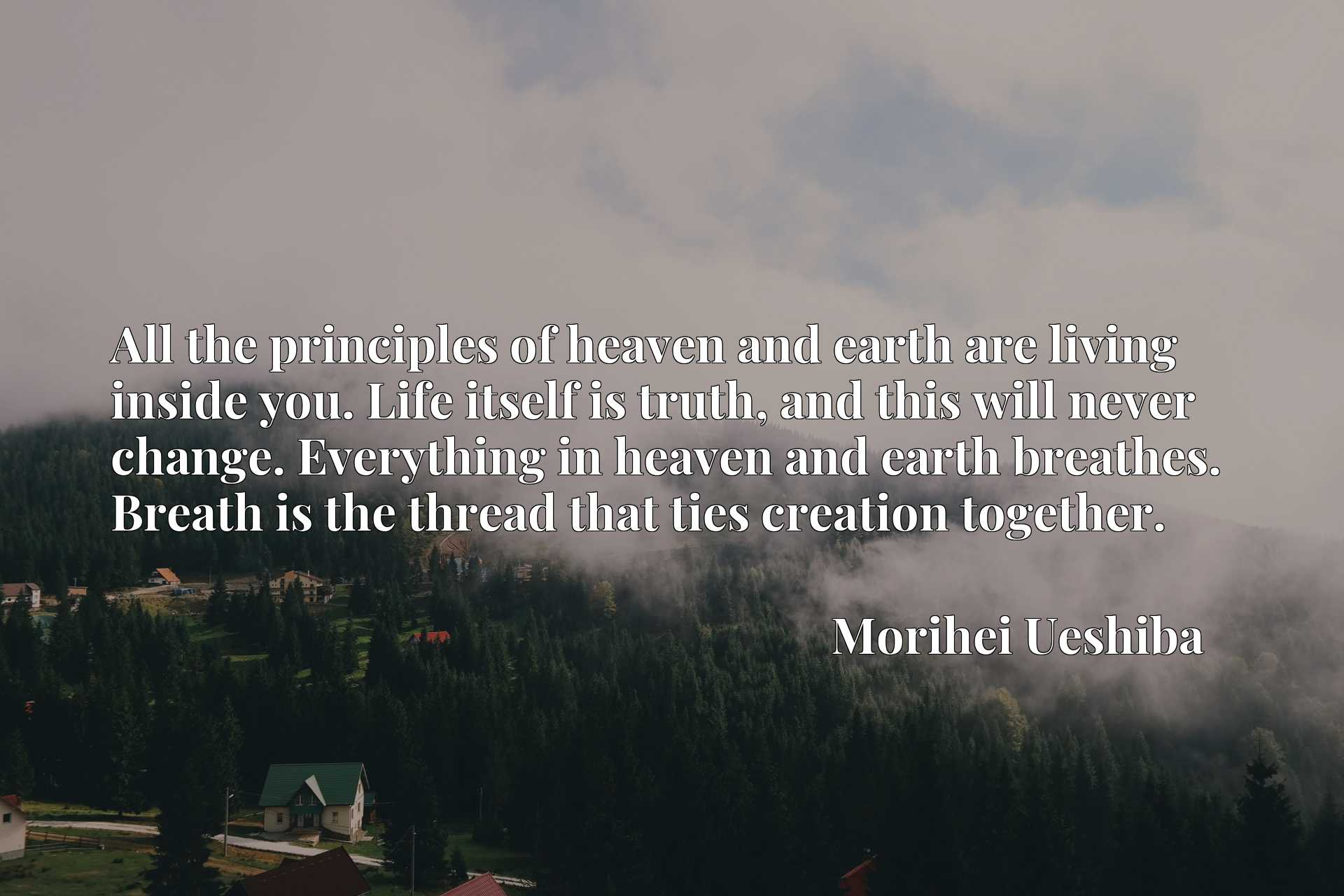 All the principles of heaven and earth are living inside you. Life itself is truth, and this will never change. Everything in heaven and earth breathes. Breath is the thread that ties creation together.