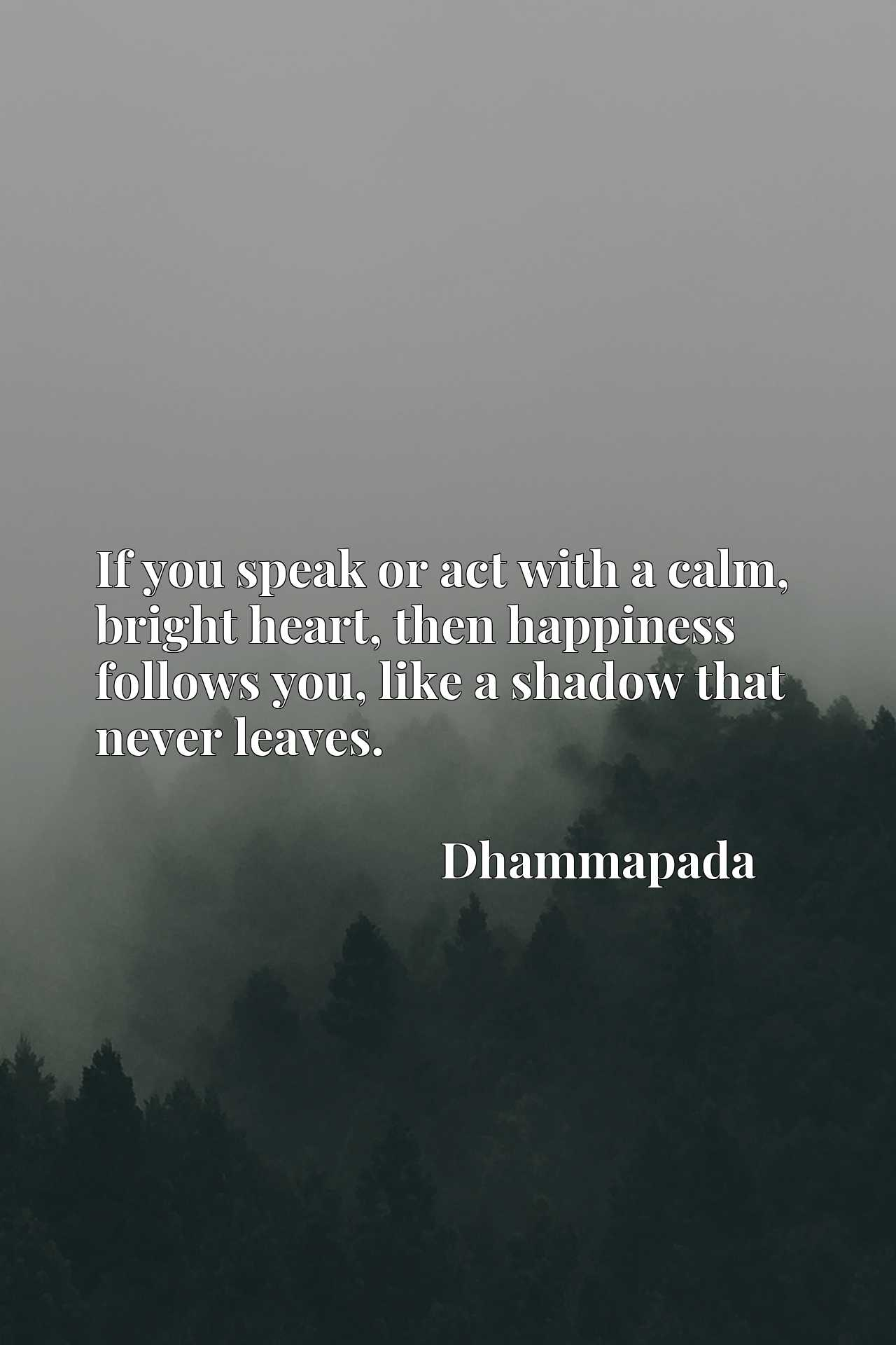 If you speak or act with a calm, bright heart, then happiness follows you, like a shadow that never leaves.