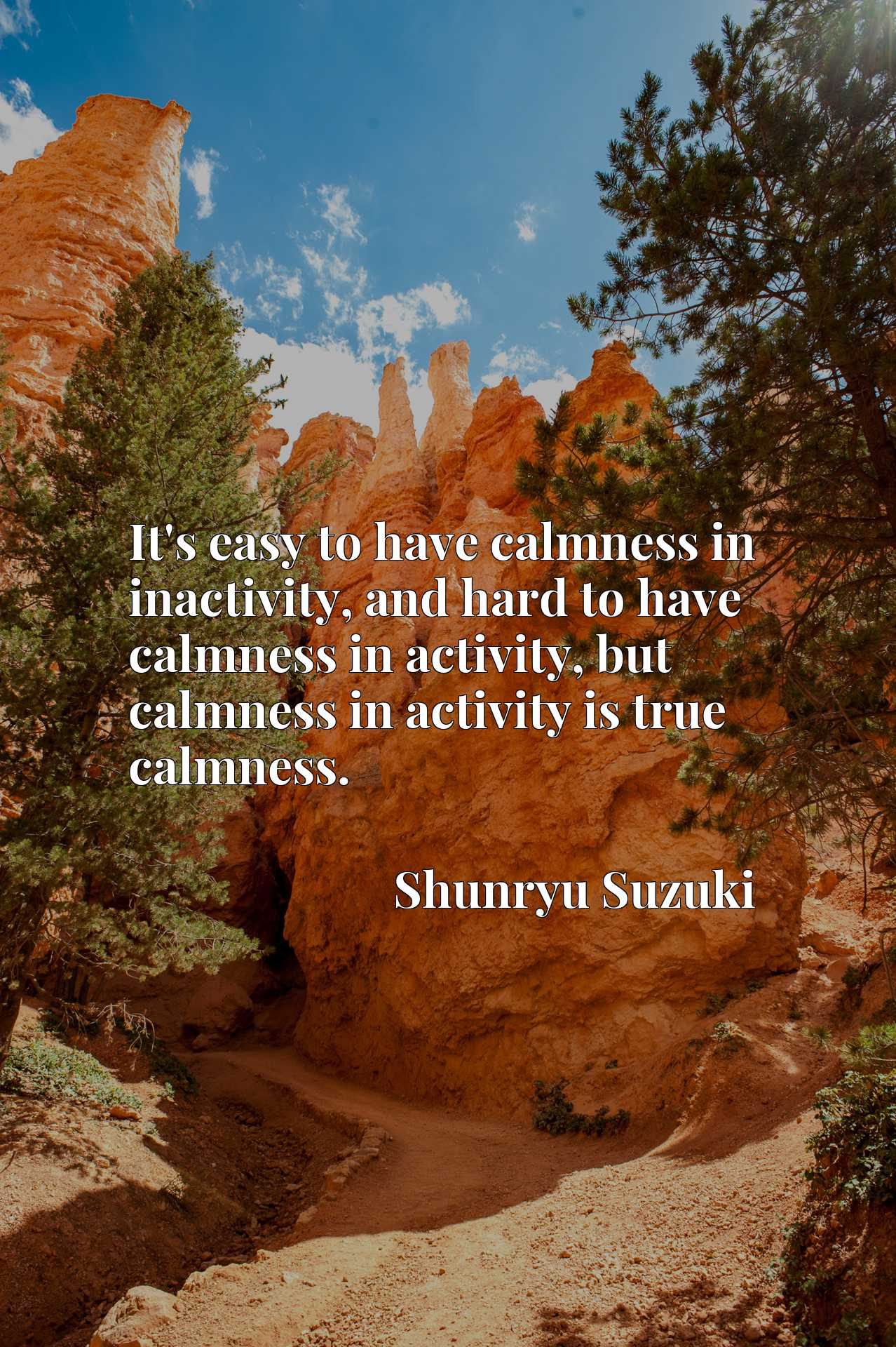 It's easy to have calmness in inactivity, and hard to have calmness in activity, but calmness in activity is true calmness.
