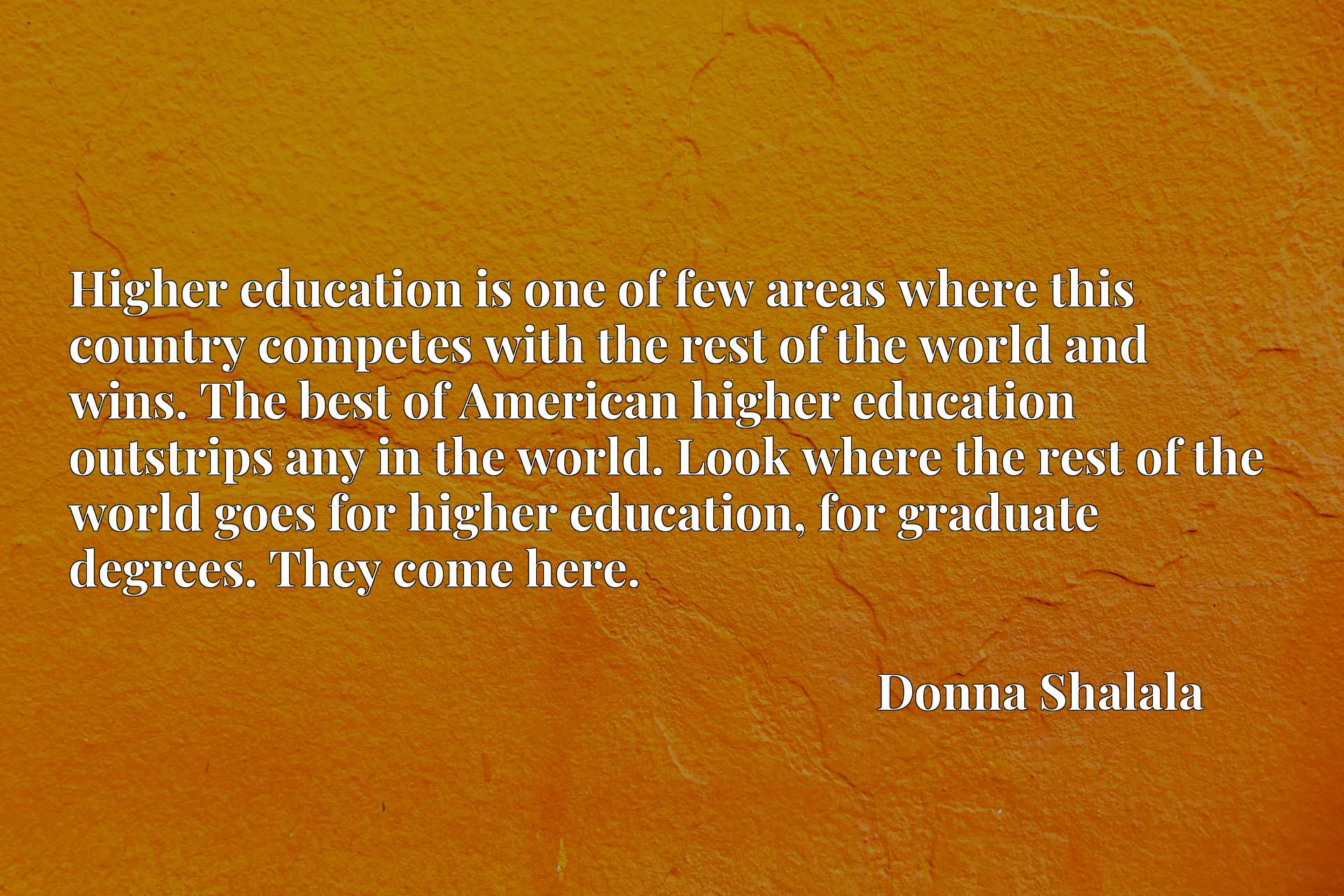 Higher education is one of few areas where this country competes with the rest of the world and wins. The best of American higher education outstrips any in the world. Look where the rest of the world goes for higher education, for graduate degrees. They come here.