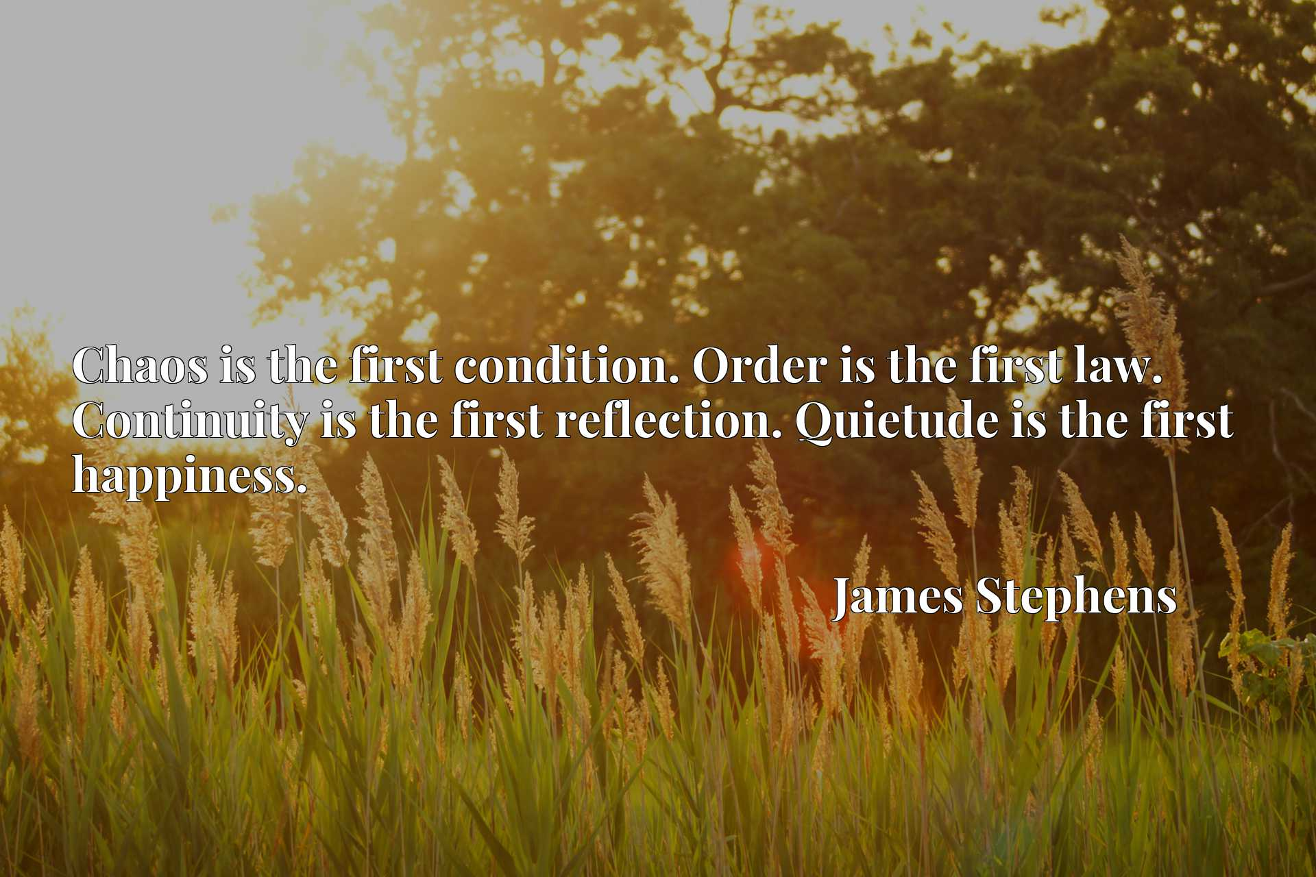 Chaos is the first condition. Order is the first law. Continuity is the first reflection. Quietude is the first happiness.