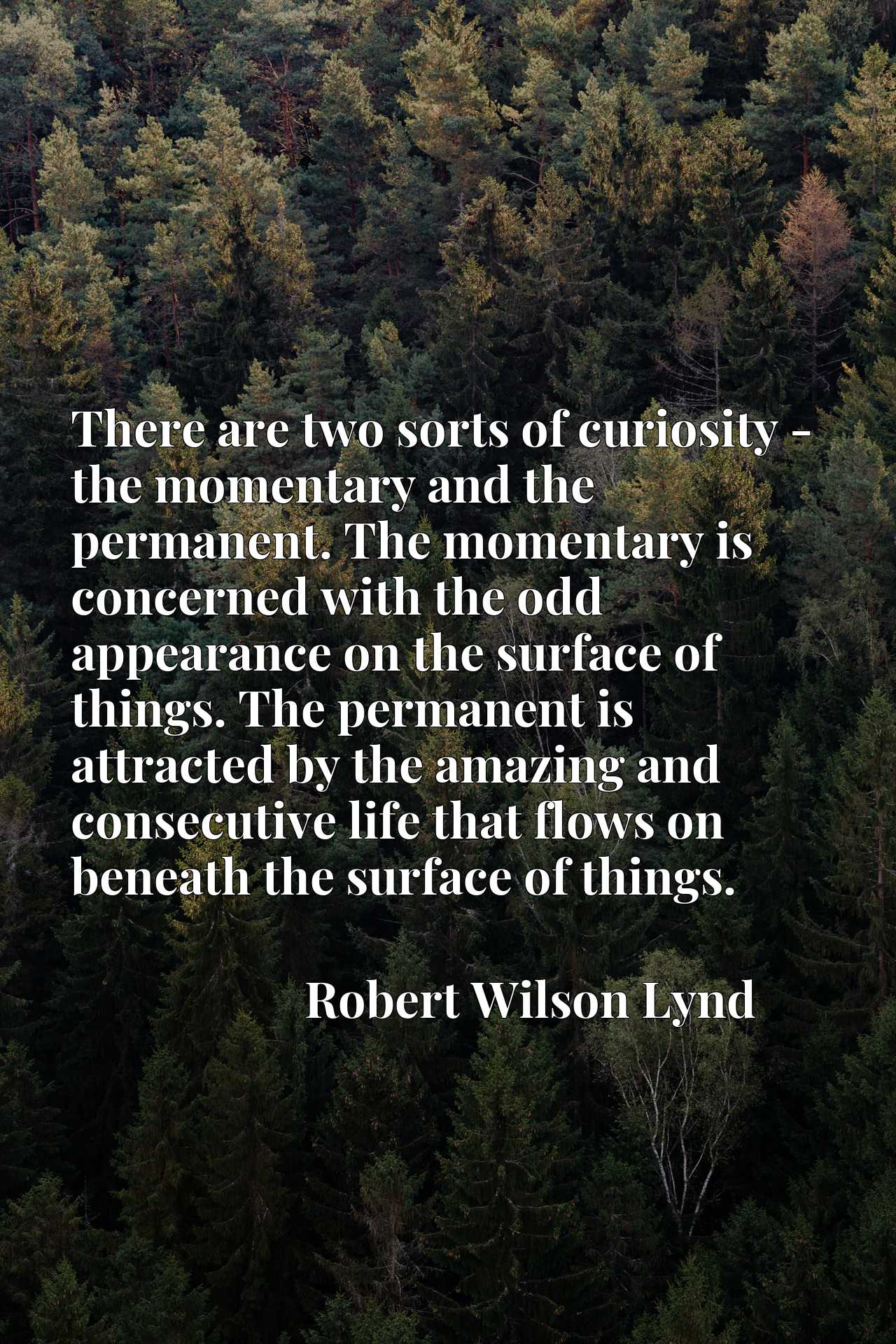 There are two sorts of curiosity - the momentary and the permanent. The momentary is concerned with the odd appearance on the surface of things. The permanent is attracted by the amazing and consecutive life that flows on beneath the surface of things.