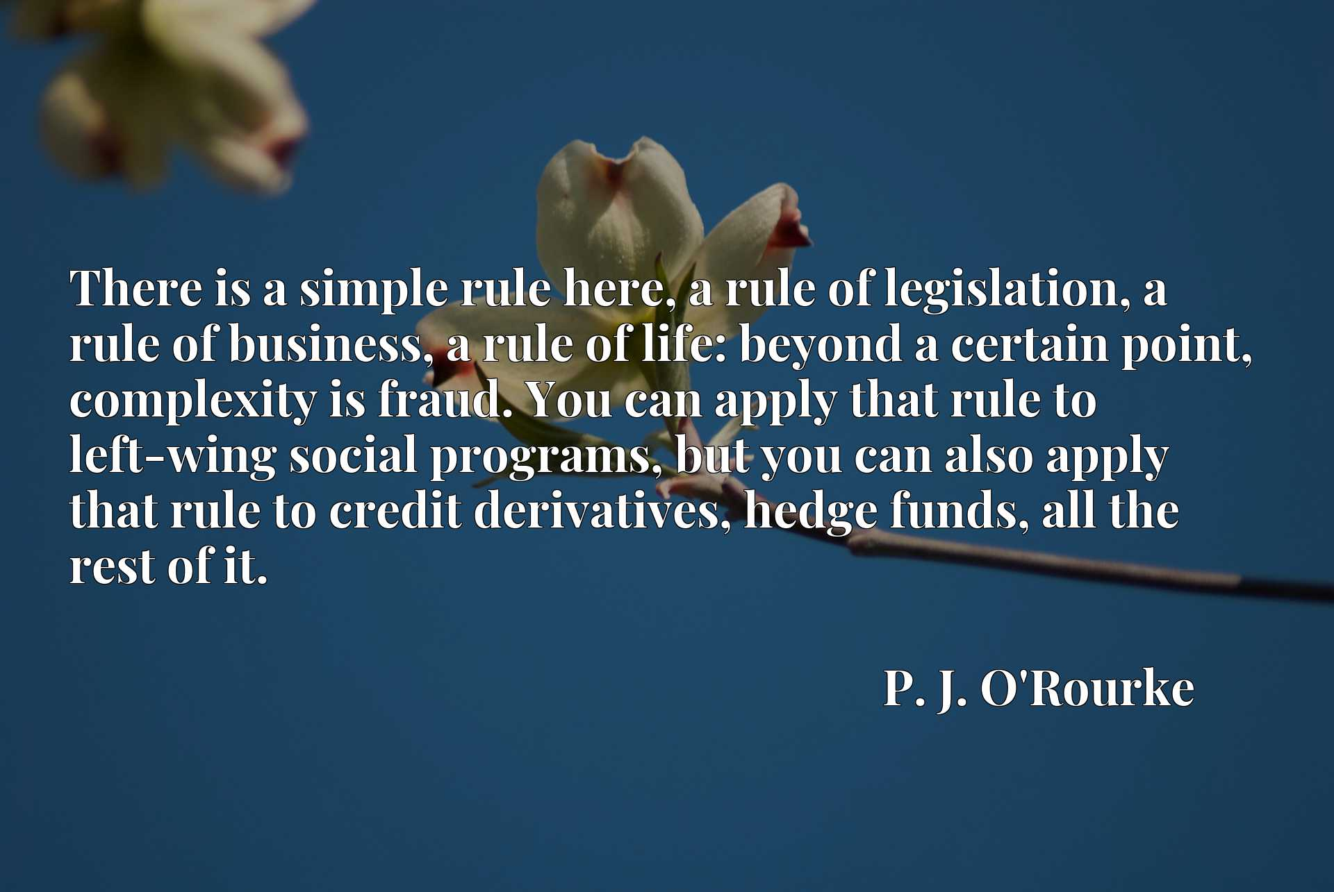 There is a simple rule here, a rule of legislation, a rule of business, a rule of life: beyond a certain point, complexity is fraud. You can apply that rule to left-wing social programs, but you can also apply that rule to credit derivatives, hedge funds, all the rest of it.