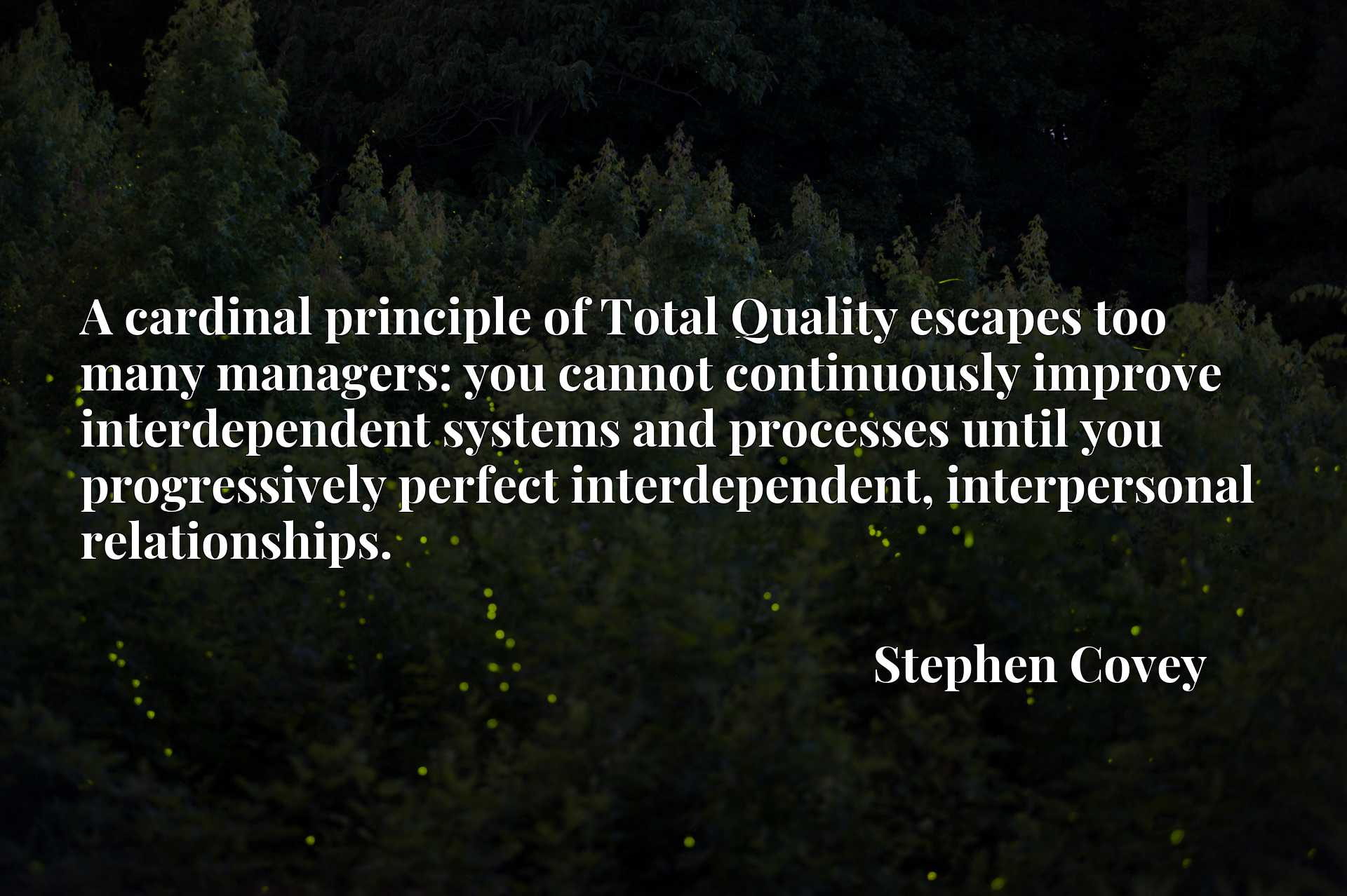 A cardinal principle of Total Quality escapes too many managers: you cannot continuously improve interdependent systems and processes until you progressively perfect interdependent, interpersonal relationships.