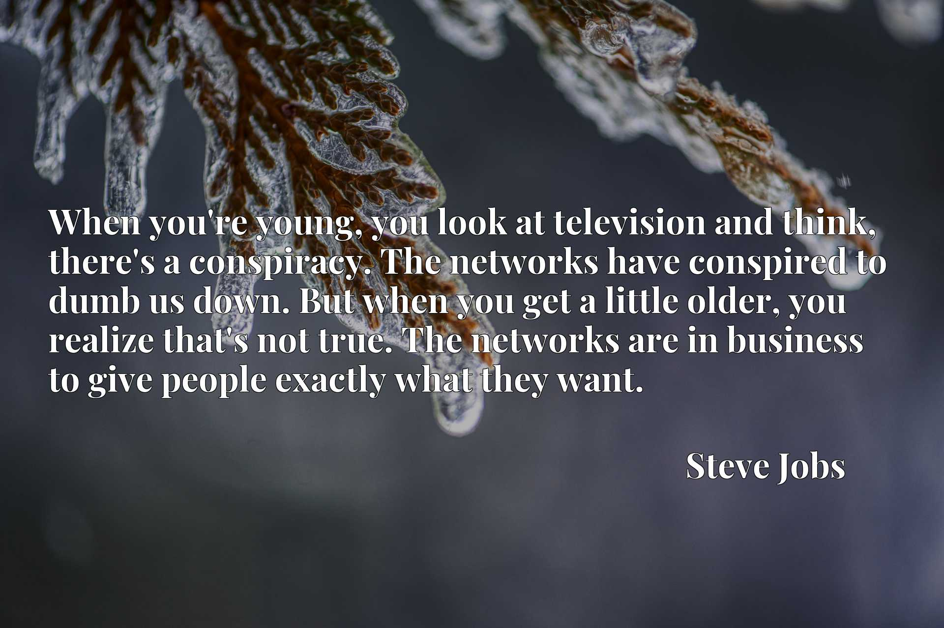 When you're young, you look at television and think, there's a conspiracy. The networks have conspired to dumb us down. But when you get a little older, you realize that's not true. The networks are in business to give people exactly what they want.