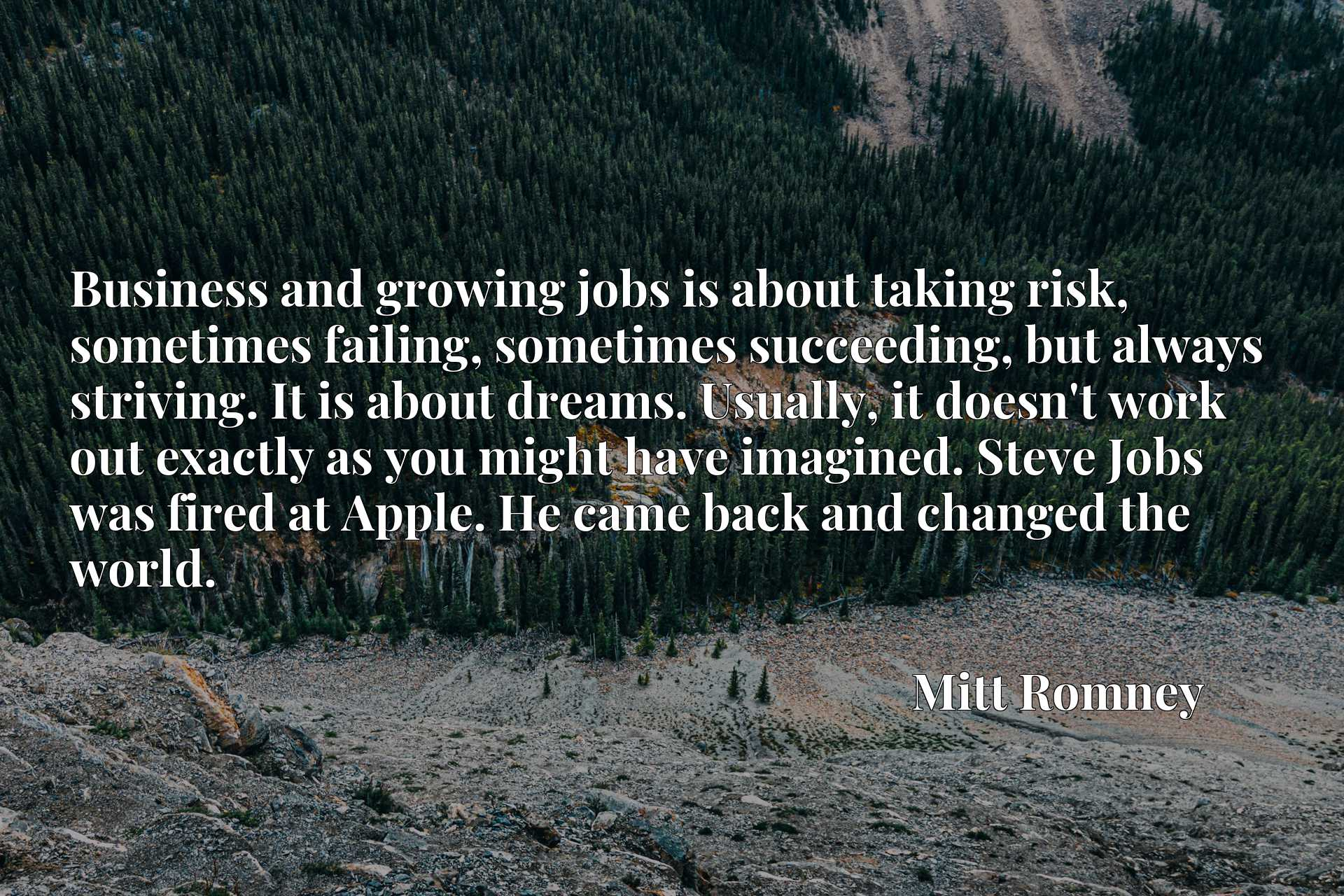 Business and growing jobs is about taking risk, sometimes failing, sometimes succeeding, but always striving. It is about dreams. Usually, it doesn't work out exactly as you might have imagined. Steve Jobs was fired at Apple. He came back and changed the world.