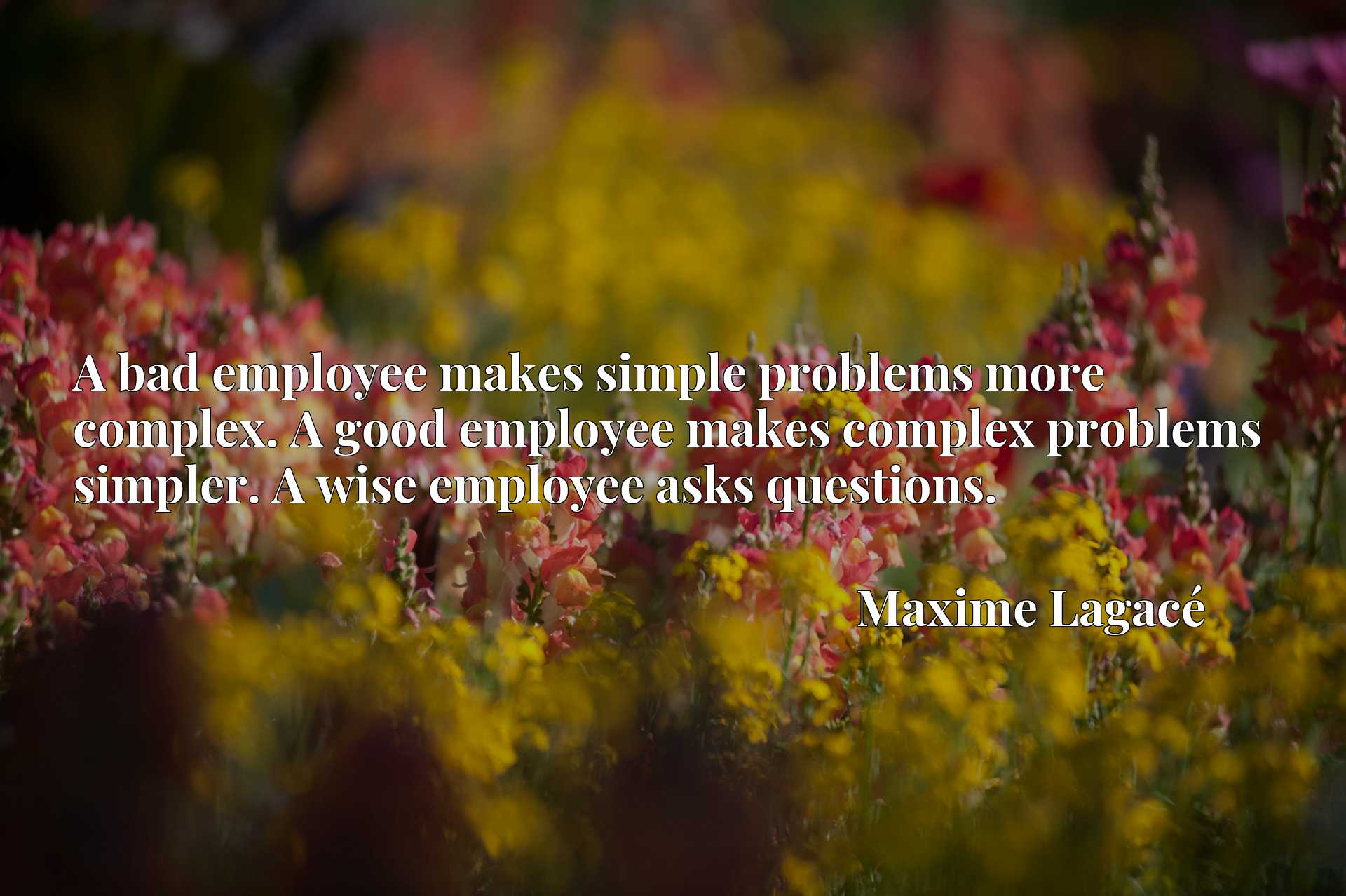 A bad employee makes simple problems more complex. A good employee makes complex problems simpler. A wise employee asks questions.