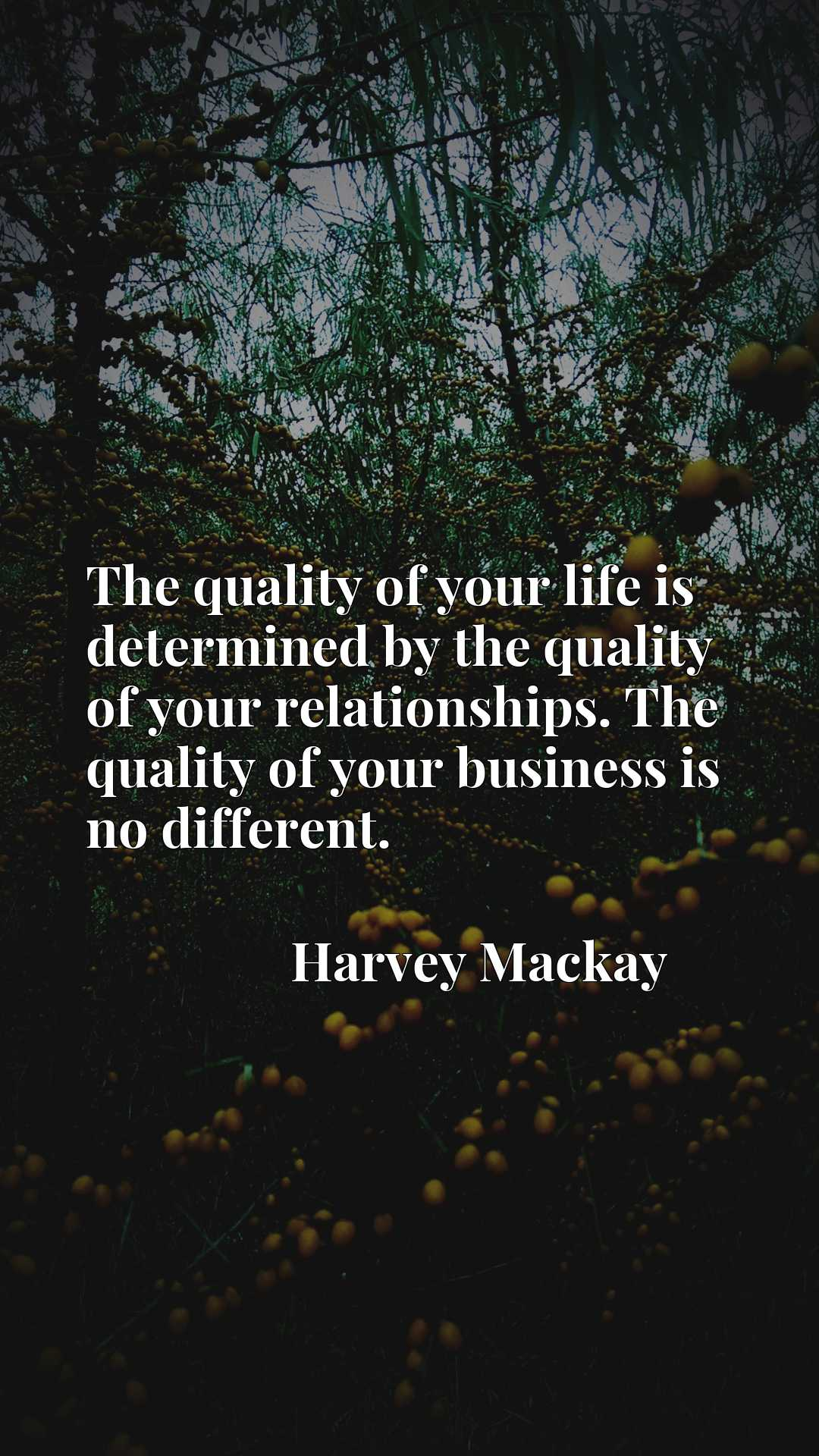 The quality of your life is determined by the quality of your relationships. The quality of your business is no different.