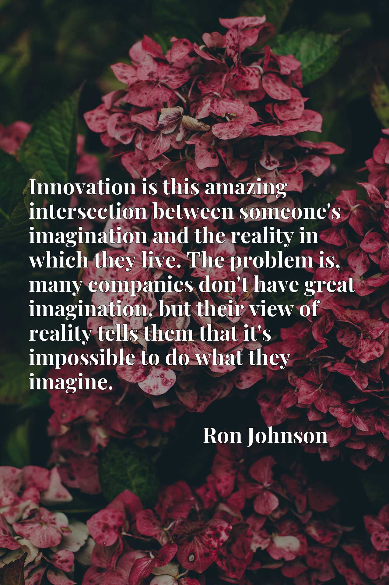 Innovation is this amazing intersection between someone's imagination and the reality in which they live. The problem is, many companies don't have great imagination, but their view of reality tells them that it's impossible to do what they imagine.