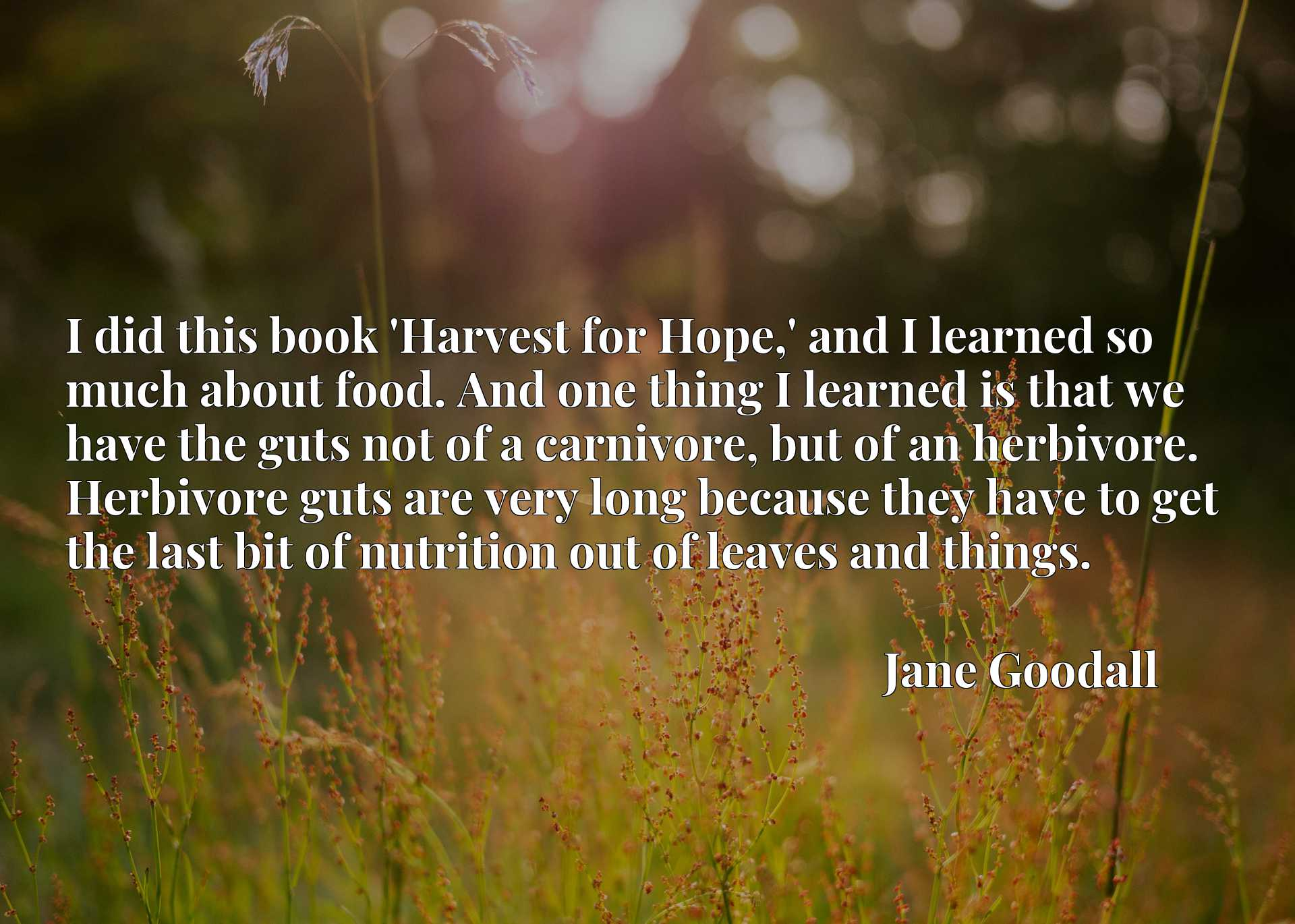 I did this book 'Harvest for Hope,' and I learned so much about food. And one thing I learned is that we have the guts not of a carnivore, but of an herbivore. Herbivore guts are very long because they have to get the last bit of nutrition out of leaves and things.