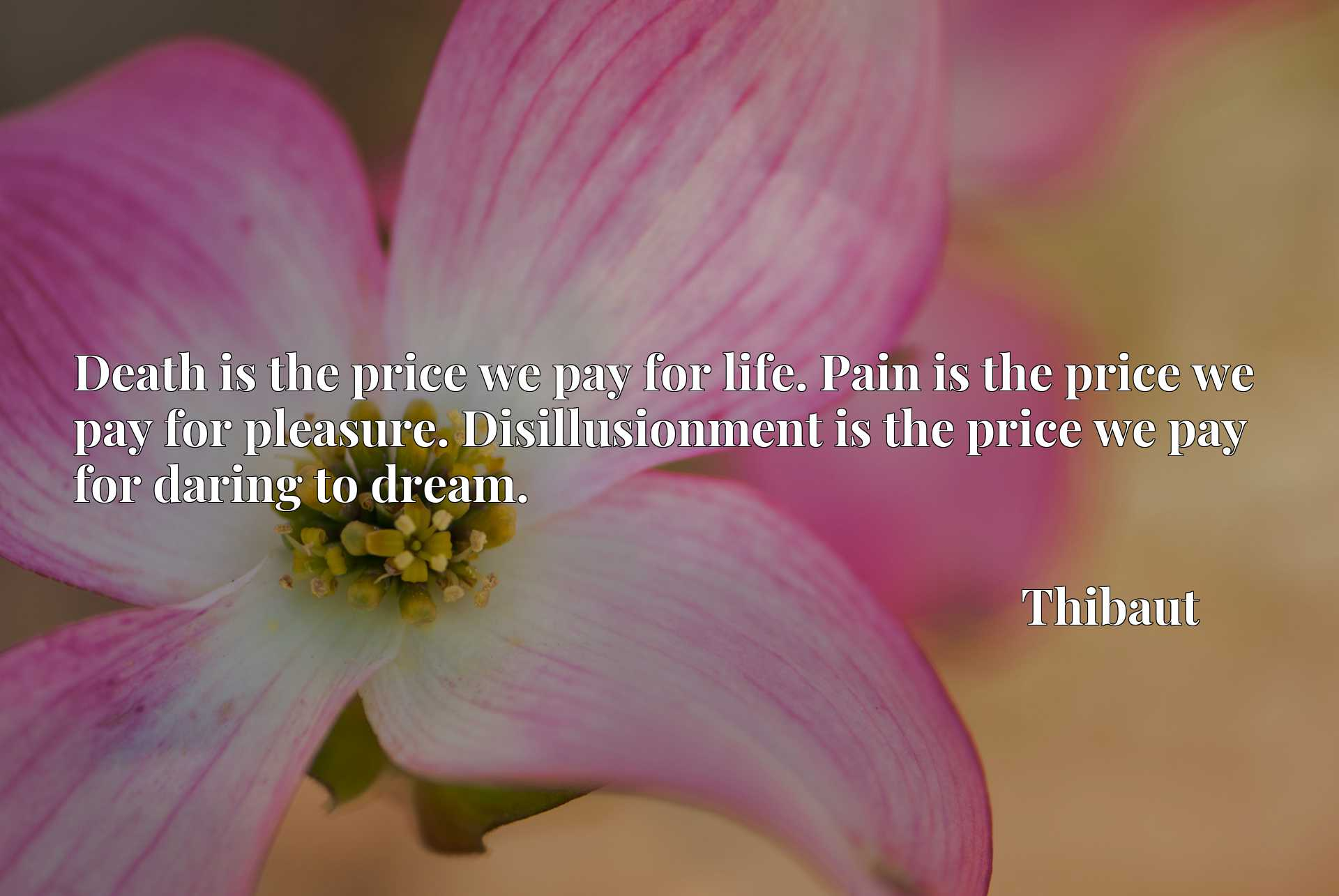 Death is the price we pay for life. Pain is the price we pay for pleasure. Disillusionment is the price we pay for daring to dream.
