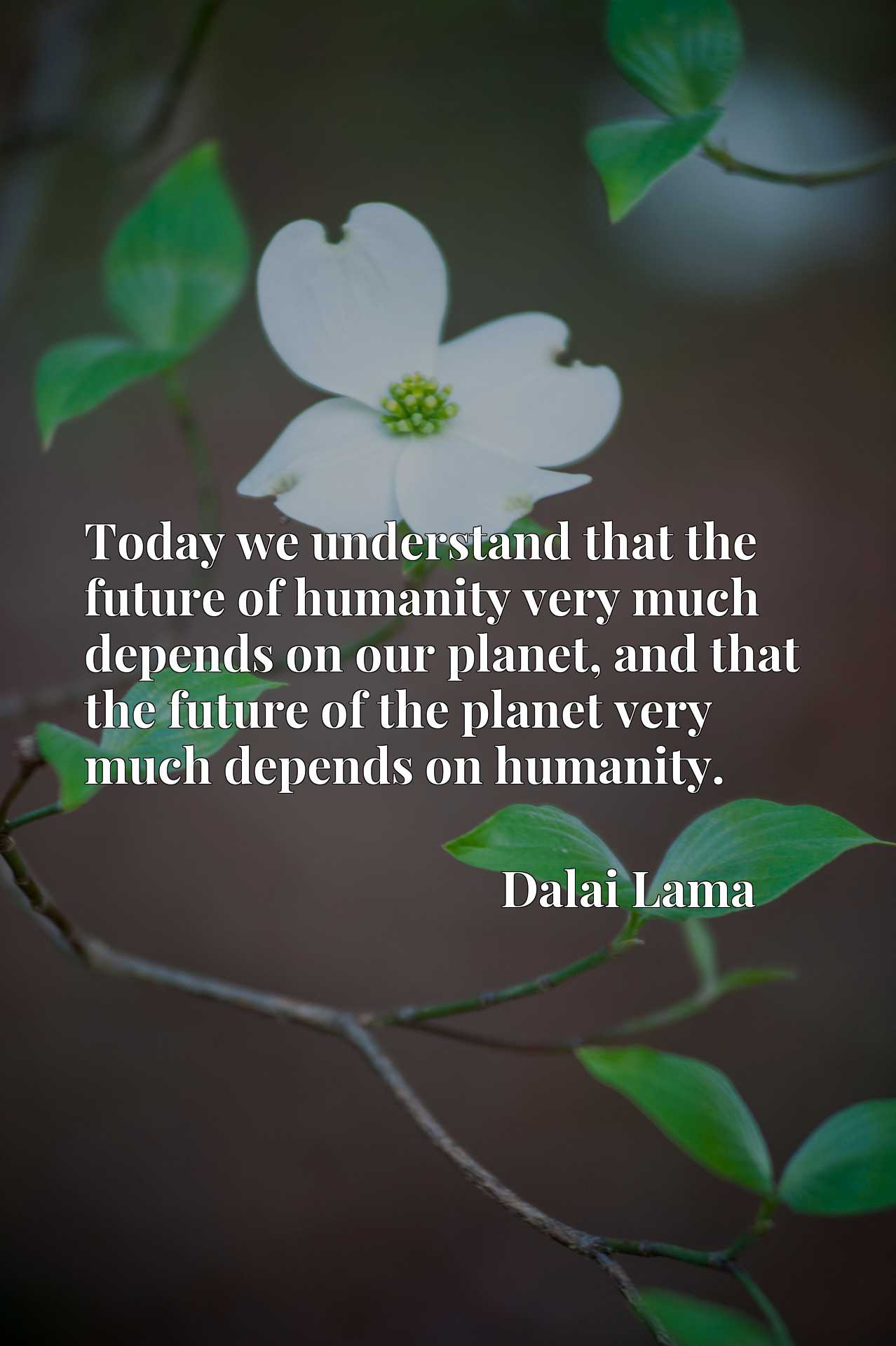 Today we understand that the future of humanity very much depends on our planet, and that the future of the planet very much depends on humanity.