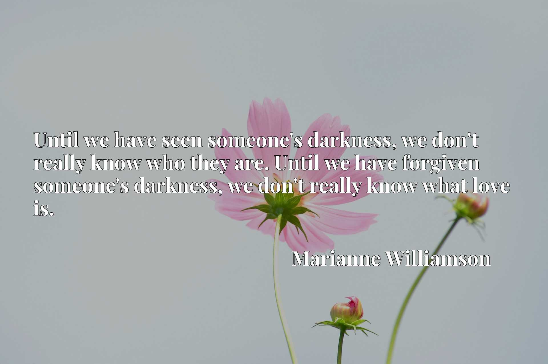Until we have seen someone's darkness, we don't really know who they are. Until we have forgiven someone's darkness, we don't really know what love is.