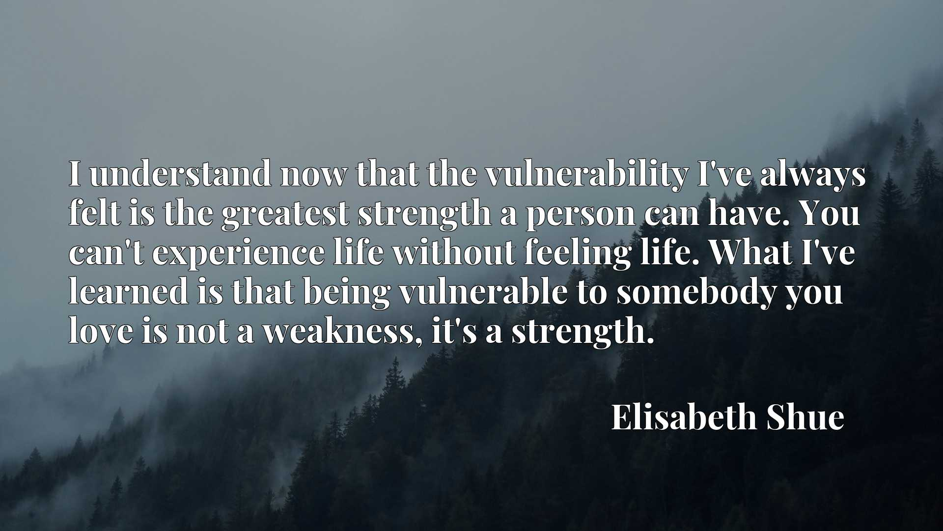 I understand now that the vulnerability I've always felt is the greatest strength a person can have. You can't experience life without feeling life. What I've learned is that being vulnerable to somebody you love is not a weakness, it's a strength.