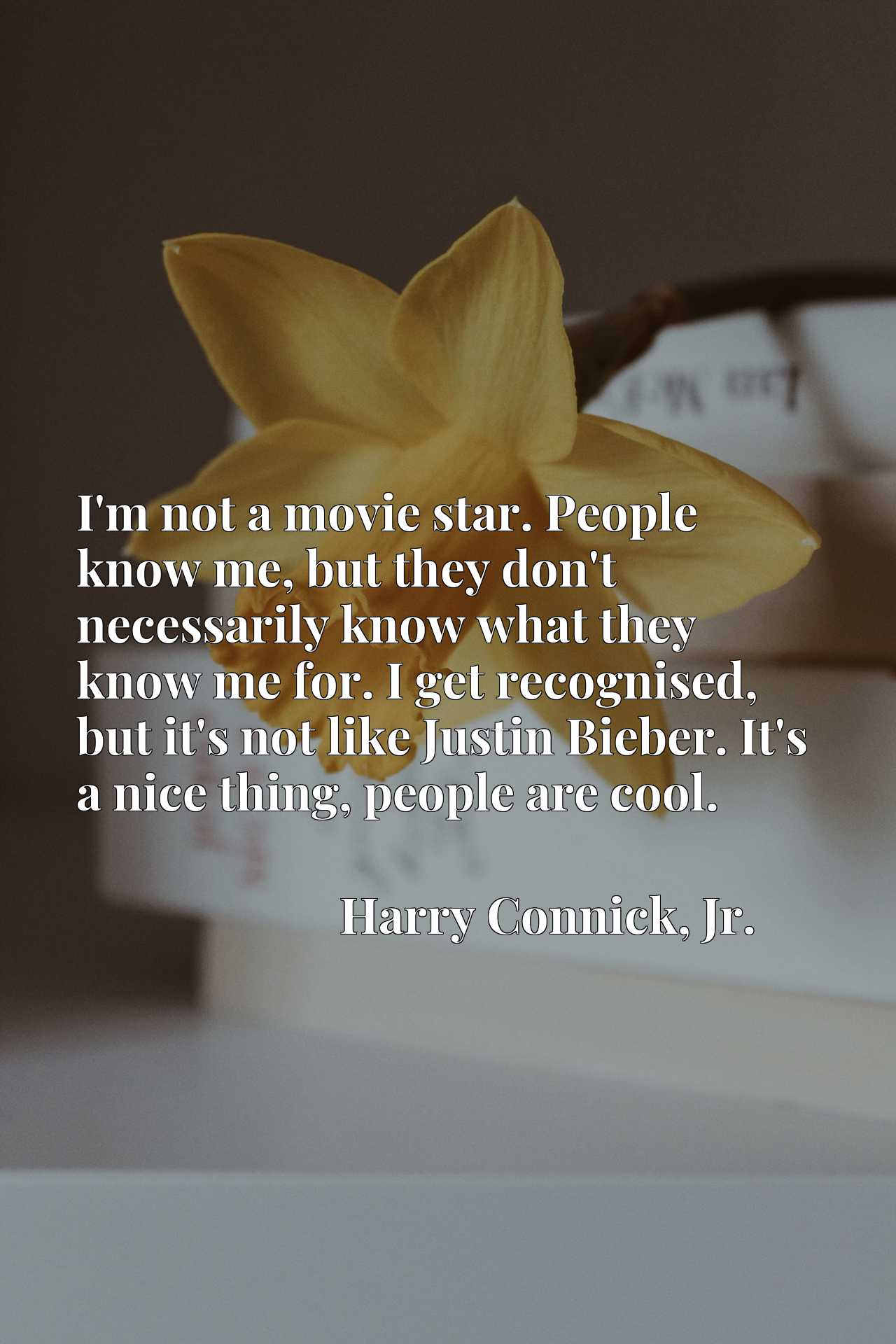 I'm not a movie star. People know me, but they don't necessarily know what they know me for. I get recognised, but it's not like Justin Bieber. It's a nice thing, people are cool.