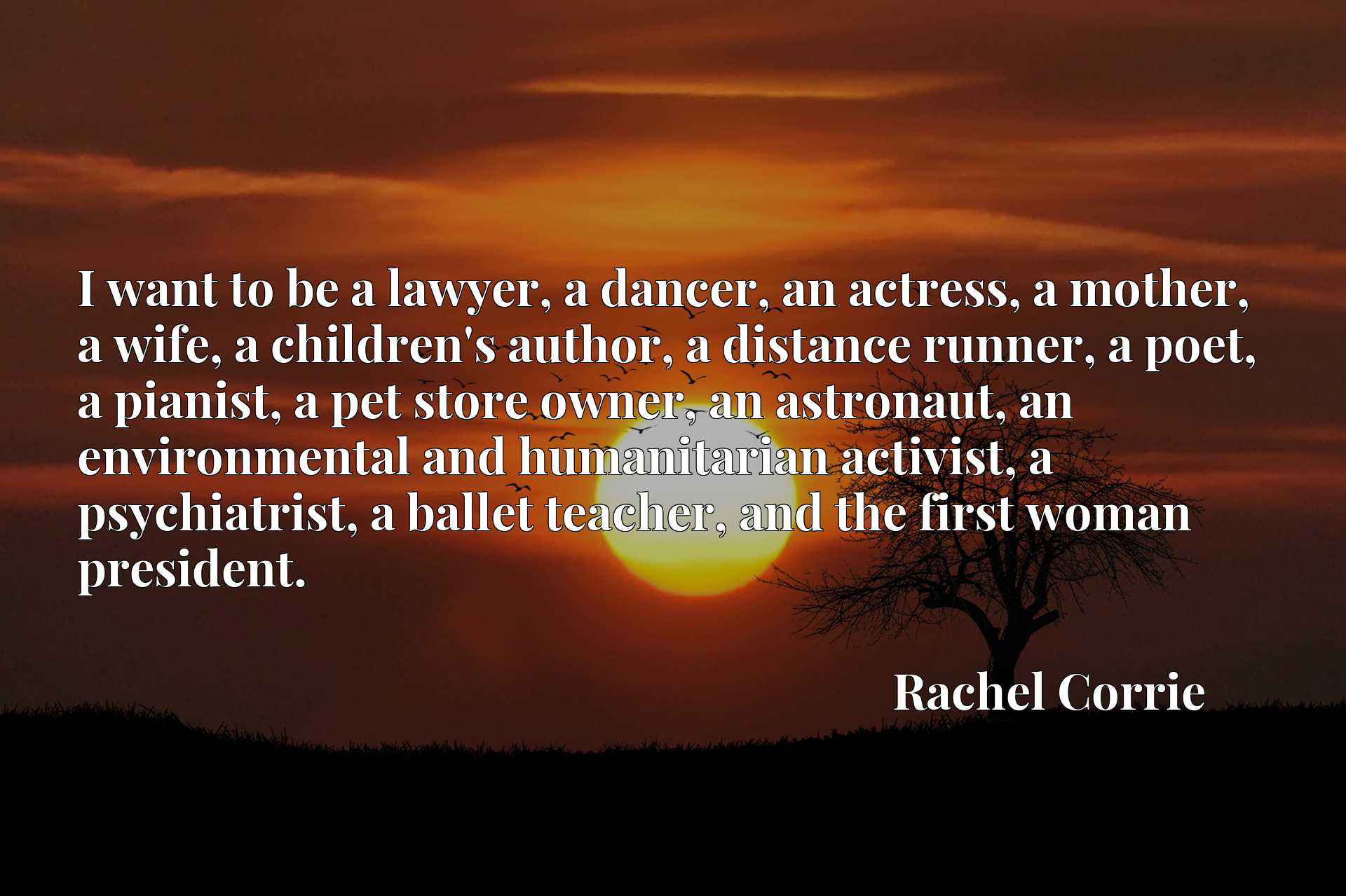 I want to be a lawyer, a dancer, an actress, a mother, a wife, a children's author, a distance runner, a poet, a pianist, a pet store owner, an astronaut, an environmental and humanitarian activist, a psychiatrist, a ballet teacher, and the first woman president.