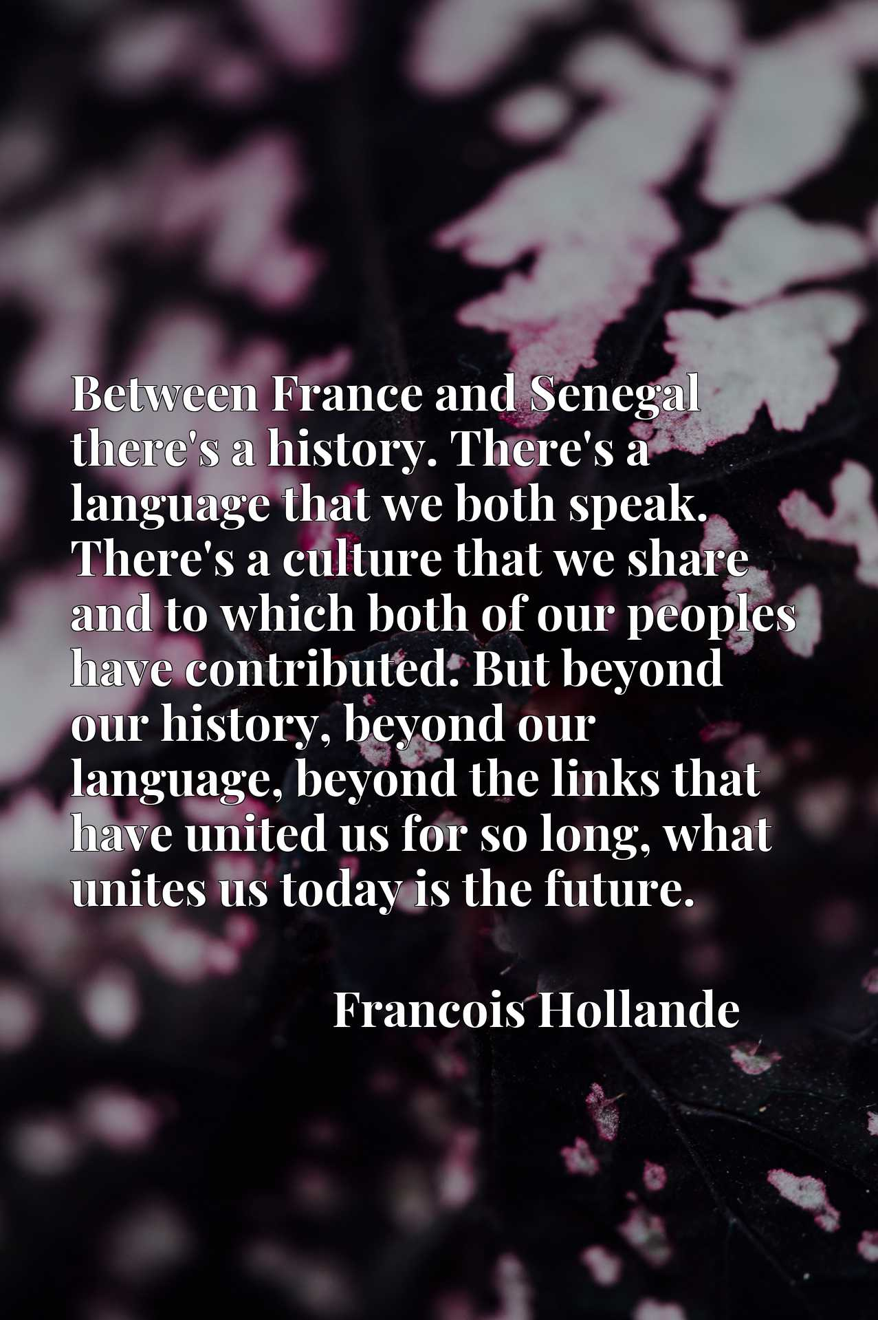 Between France and Senegal there's a history. There's a language that we both speak. There's a culture that we share and to which both of our peoples have contributed. But beyond our history, beyond our language, beyond the links that have united us for so long, what unites us today is the future.