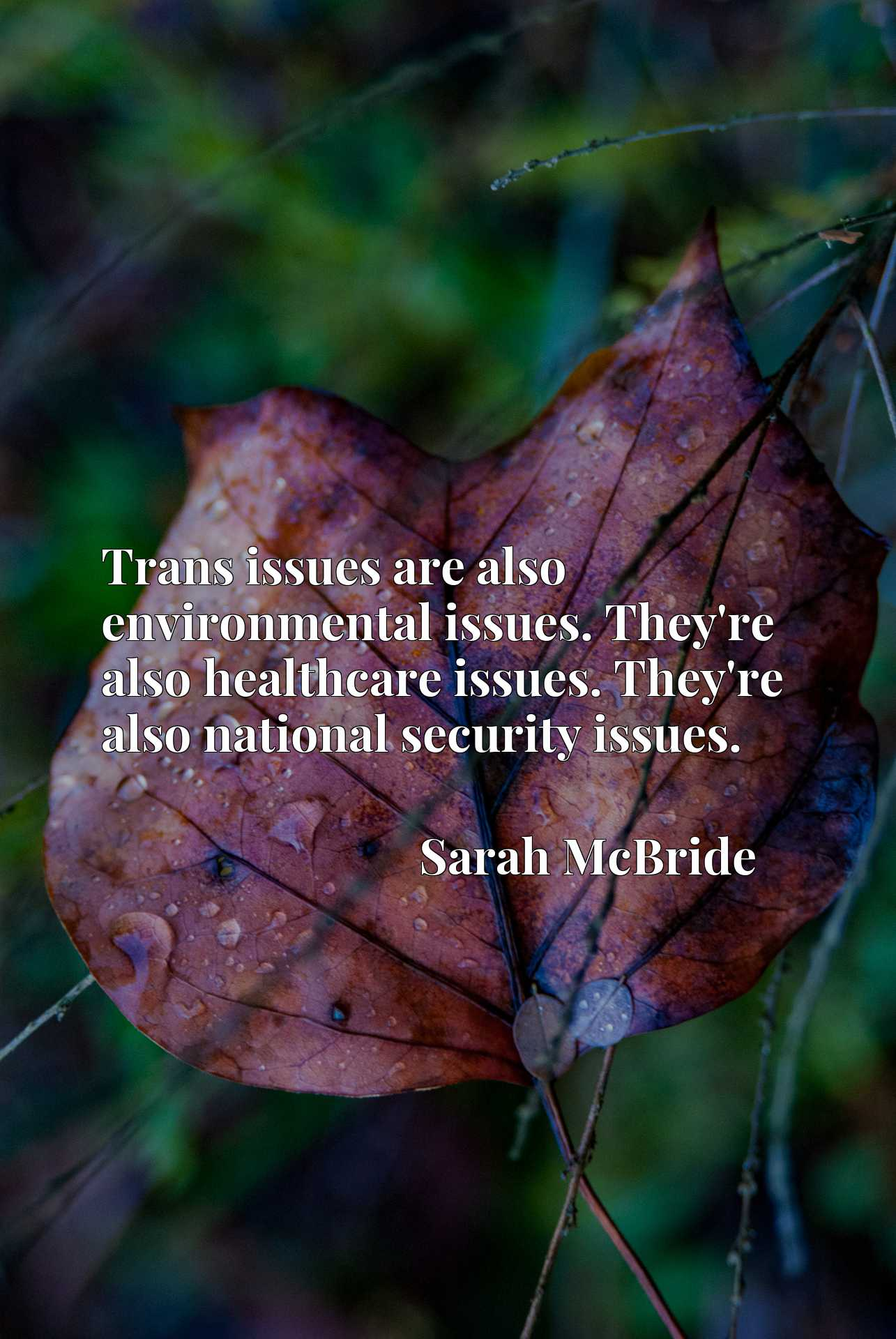 Trans issues are also environmental issues. They're also healthcare issues. They're also national security issues.