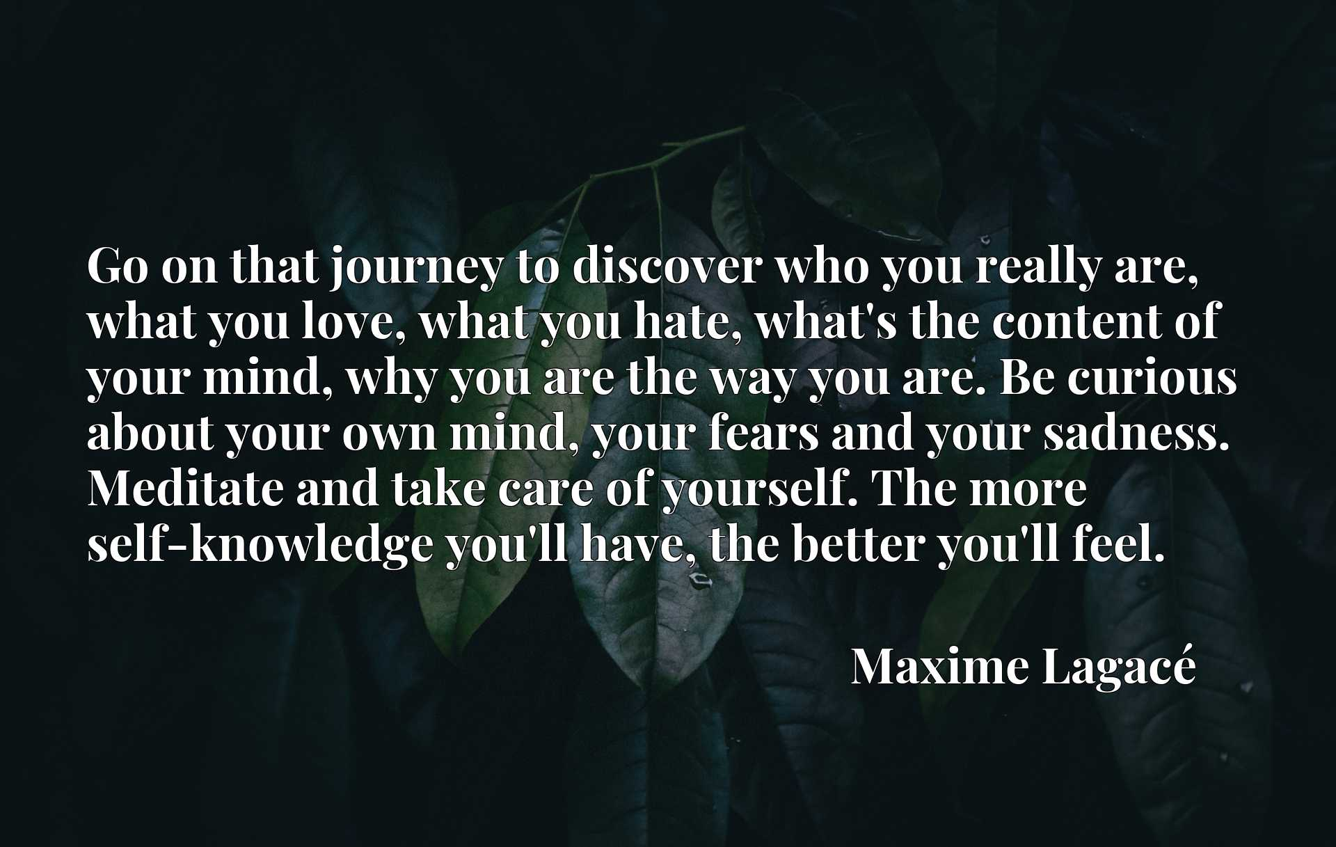 Go on that journey to discover who you really are, what you love, what you hate, what's the content of your mind, why you are the way you are. Be curious about your own mind, your fears and your sadness. Meditate and take care of yourself. The more self-knowledge you'll have, the better you'll feel.