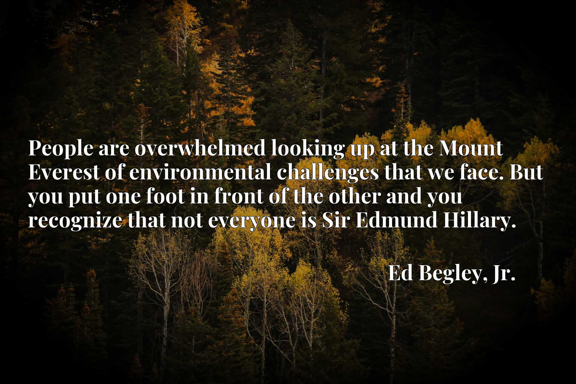 People are overwhelmed looking up at the Mount Everest of environmental challenges that we face. But you put one foot in front of the other and you recognize that not everyone is Sir Edmund Hillary.