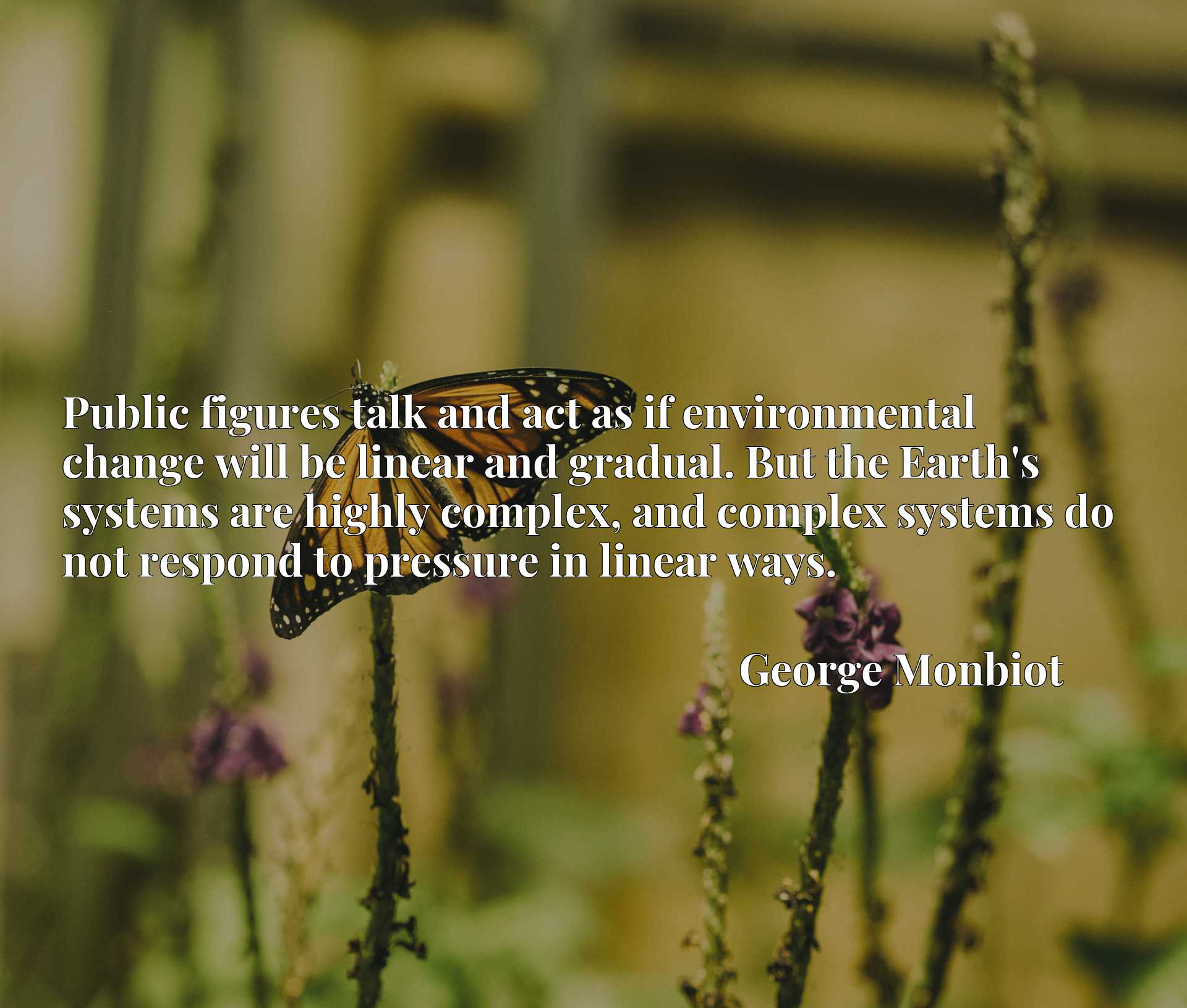 Public figures talk and act as if environmental change will be linear and gradual. But the Earth's systems are highly complex, and complex systems do not respond to pressure in linear ways.